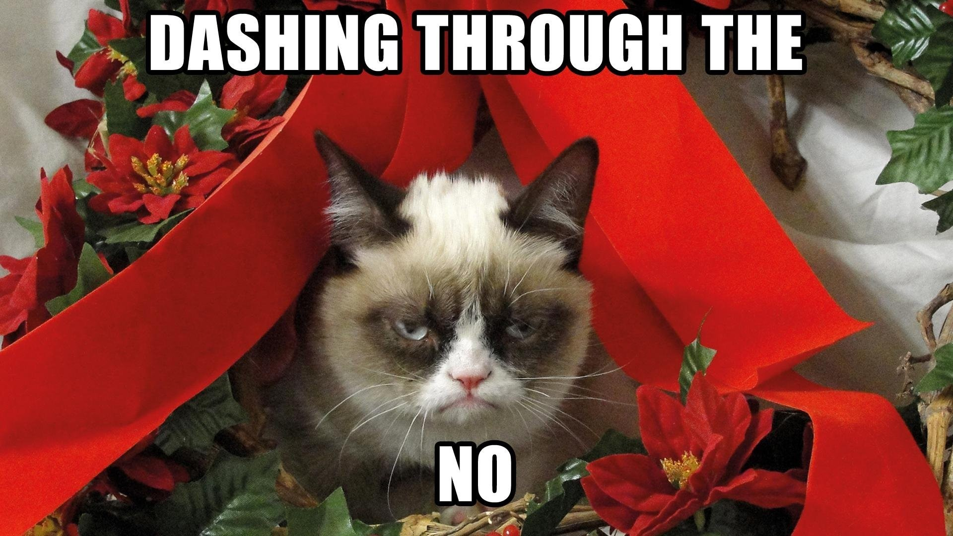 Funny Christmas Wallpaper.Funny Christmas Desktop Backgrounds 60 Pictures