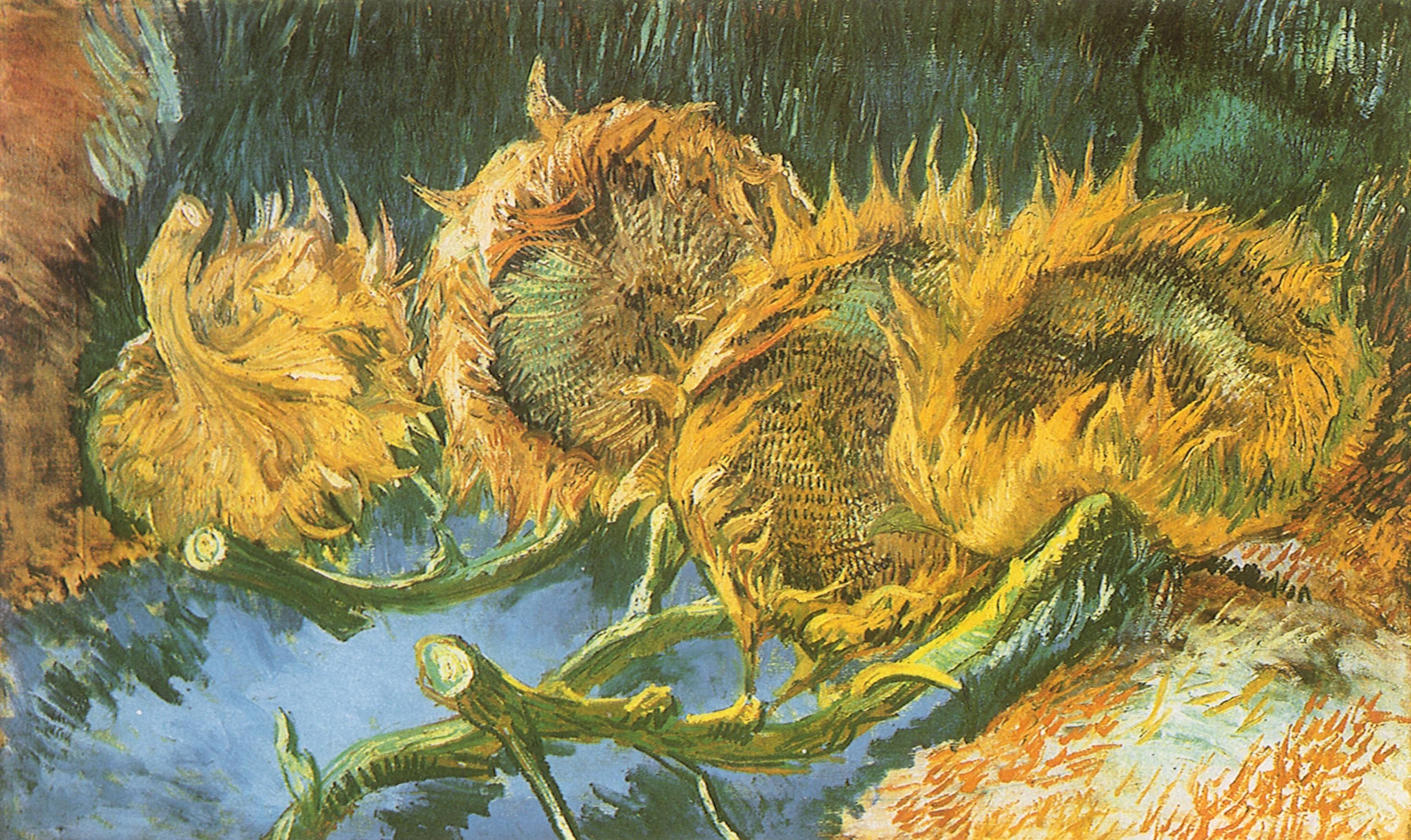Van Gogh Wallpapers 52 Pictures