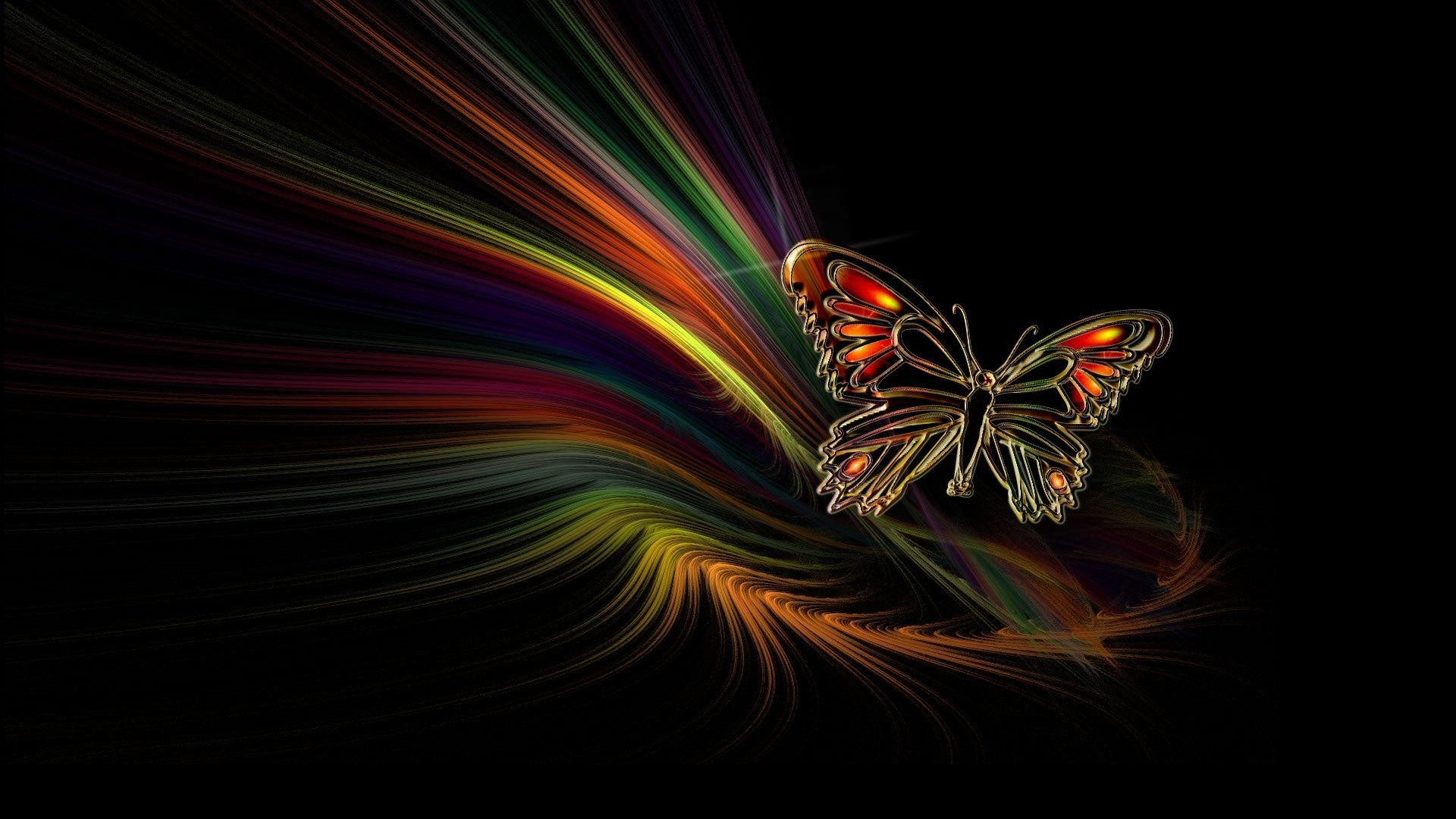 Cool Butterfly Wallpapers 59 Pictures