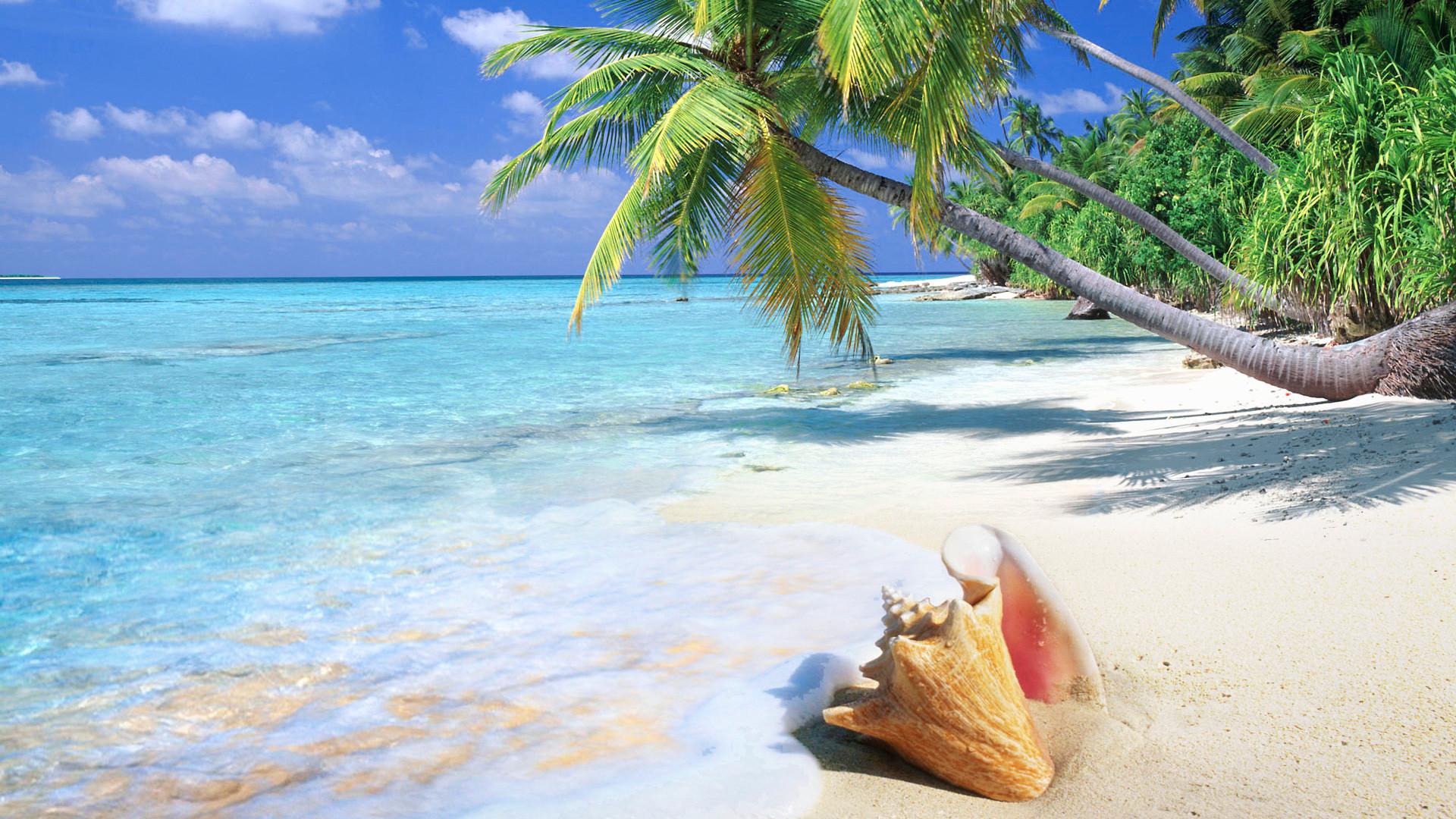 Florida Beach Wallpaper Desktop
