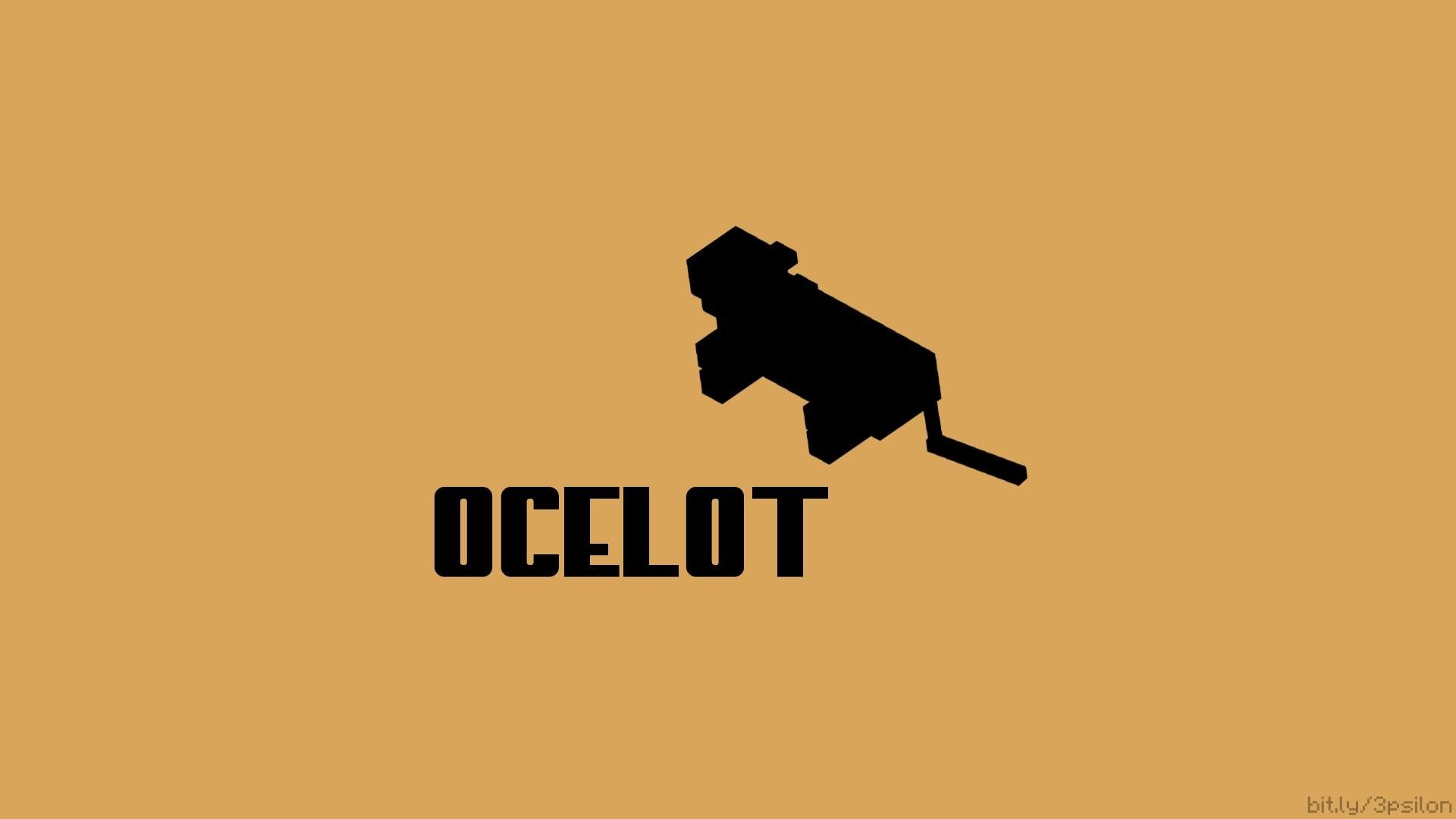 Ocelot Wallpaper 67 Pictures