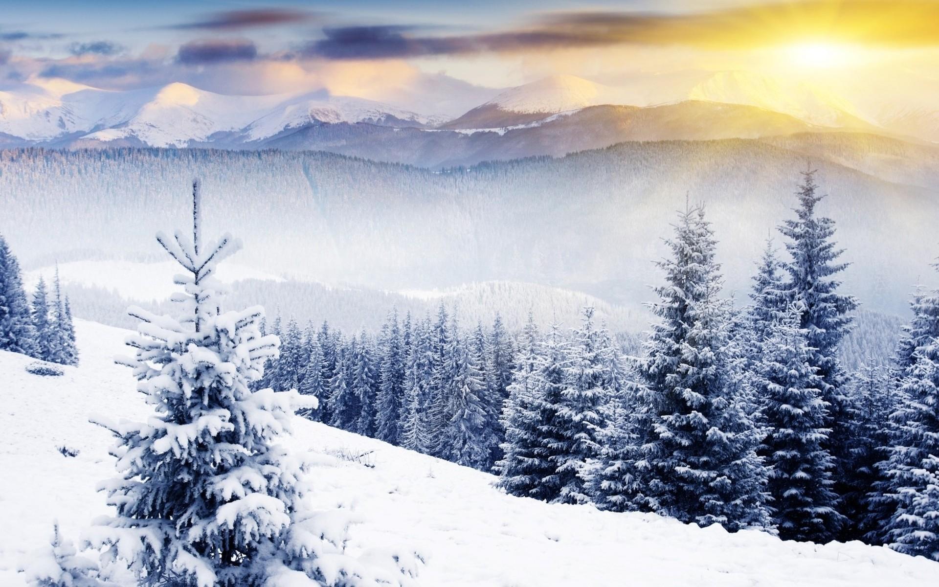 Winter Scene Desktop Background 51 Pictures