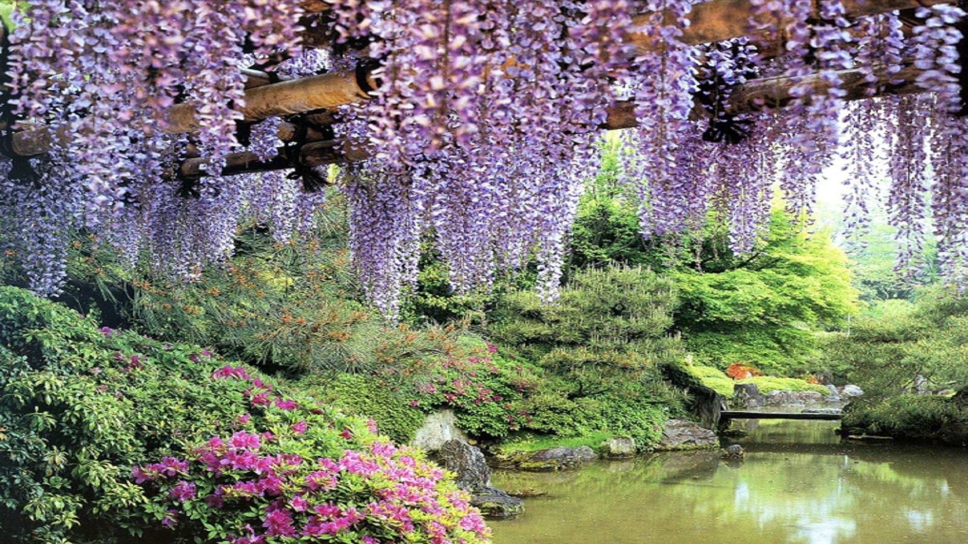 1920x1080 Blooming Garden Wallpaper