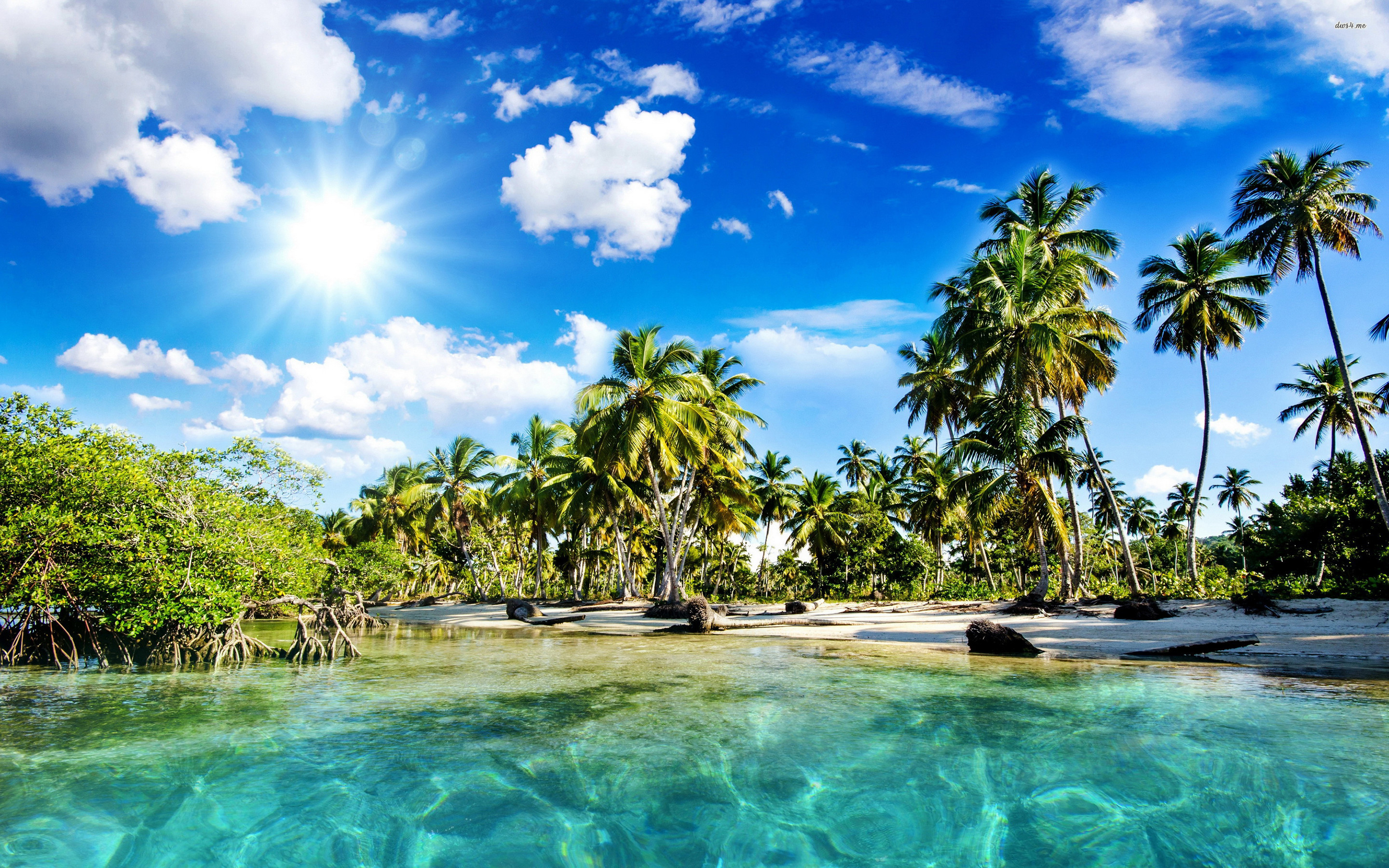 Exotic Beach Wallpaper 70 Pictures