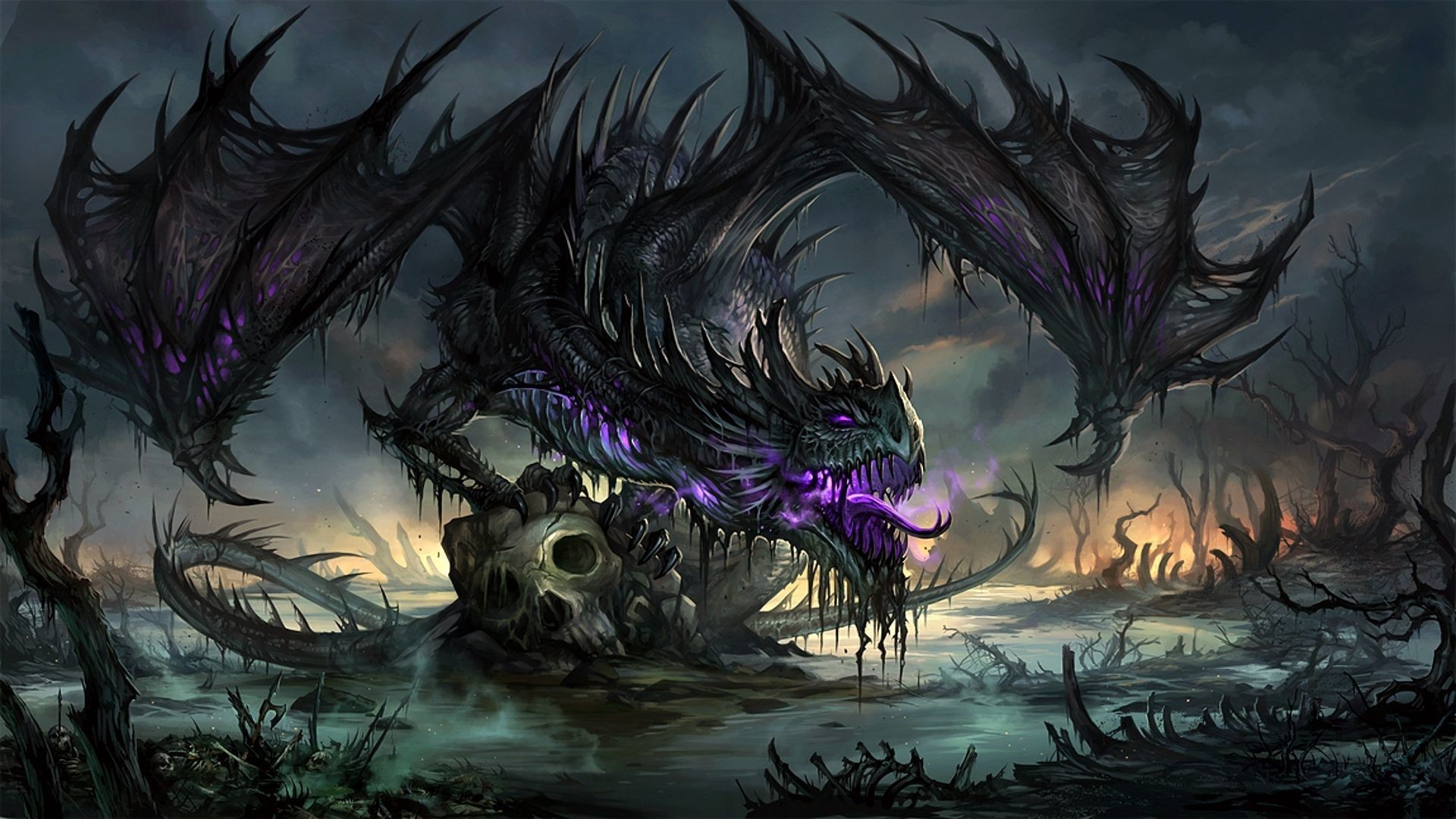 Dragons Wallpapers Hd 73 Pictures