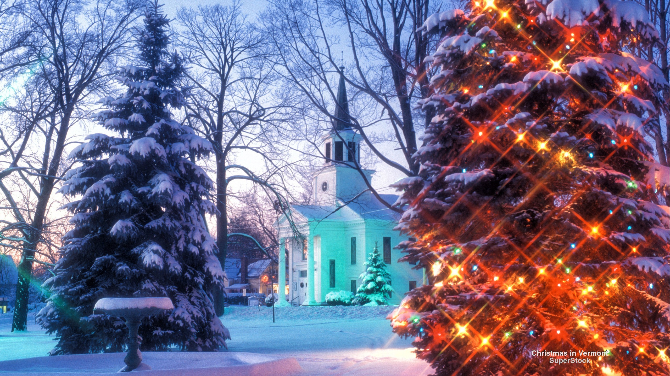 Christmas winter backgrounds 51 pictures - Christmas nature wallpaper ...