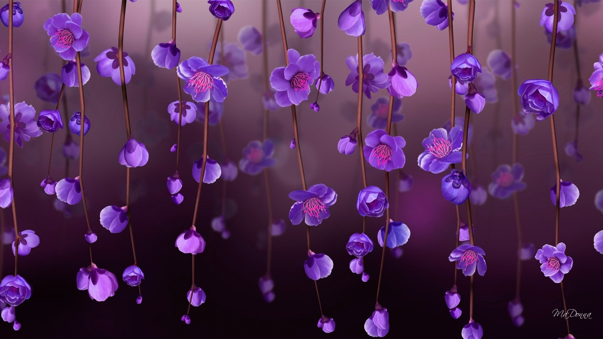 Purple Flower Backgrounds 60 Pictures