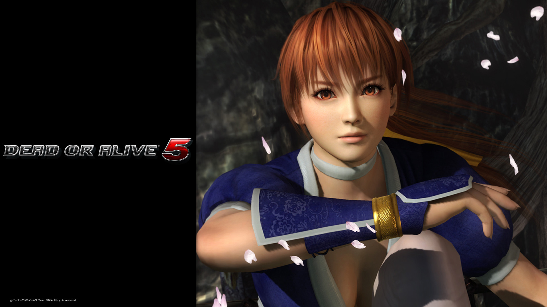 Dead Or Alive 5 Wallpapers 89 Pictures