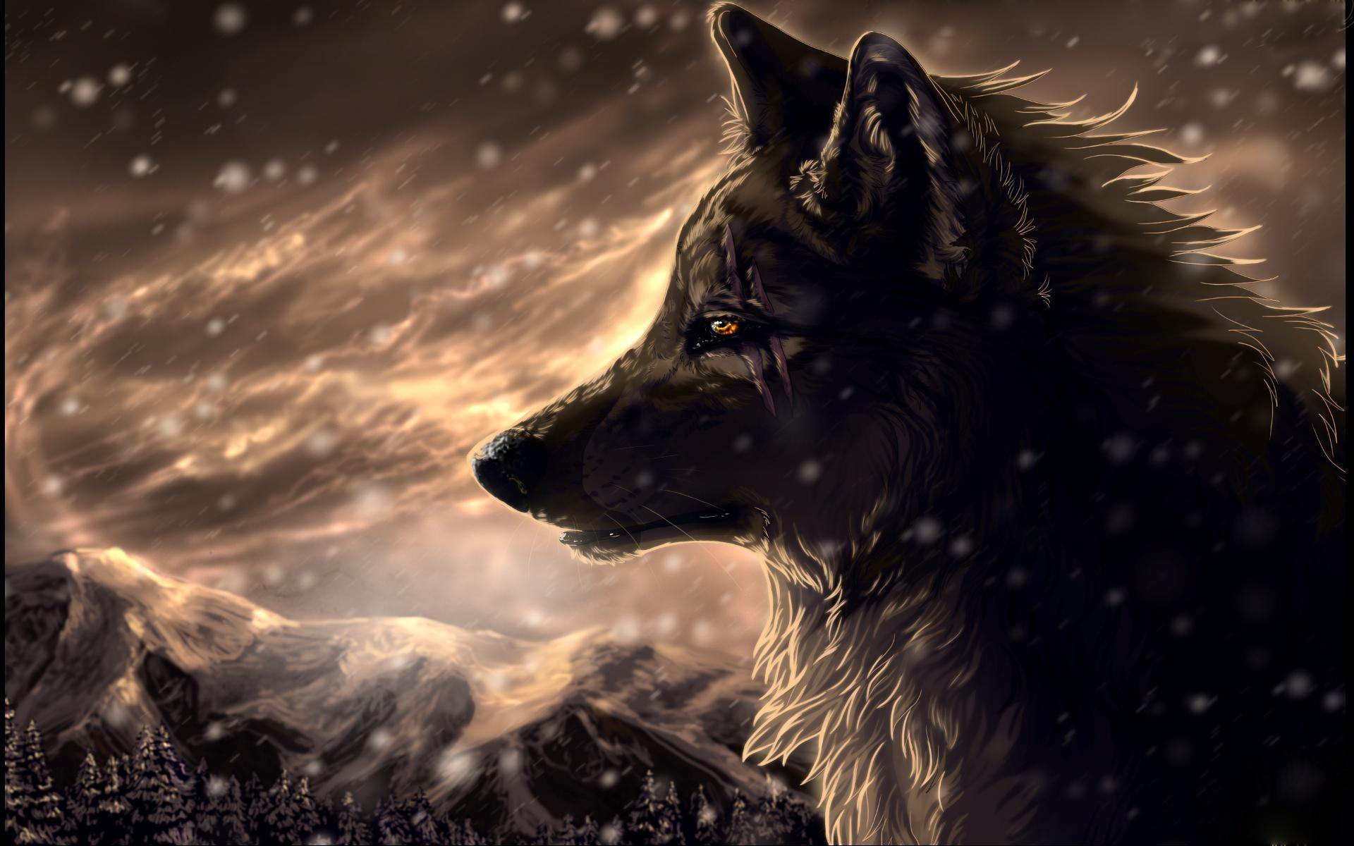 Cool Anime Wolf Wallpapers Gambarku