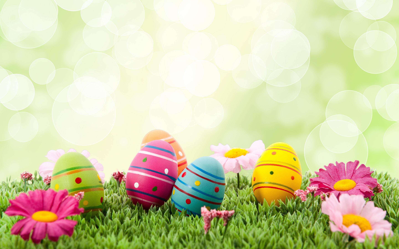 Easter Desktop Wallpapers 65 Pictures