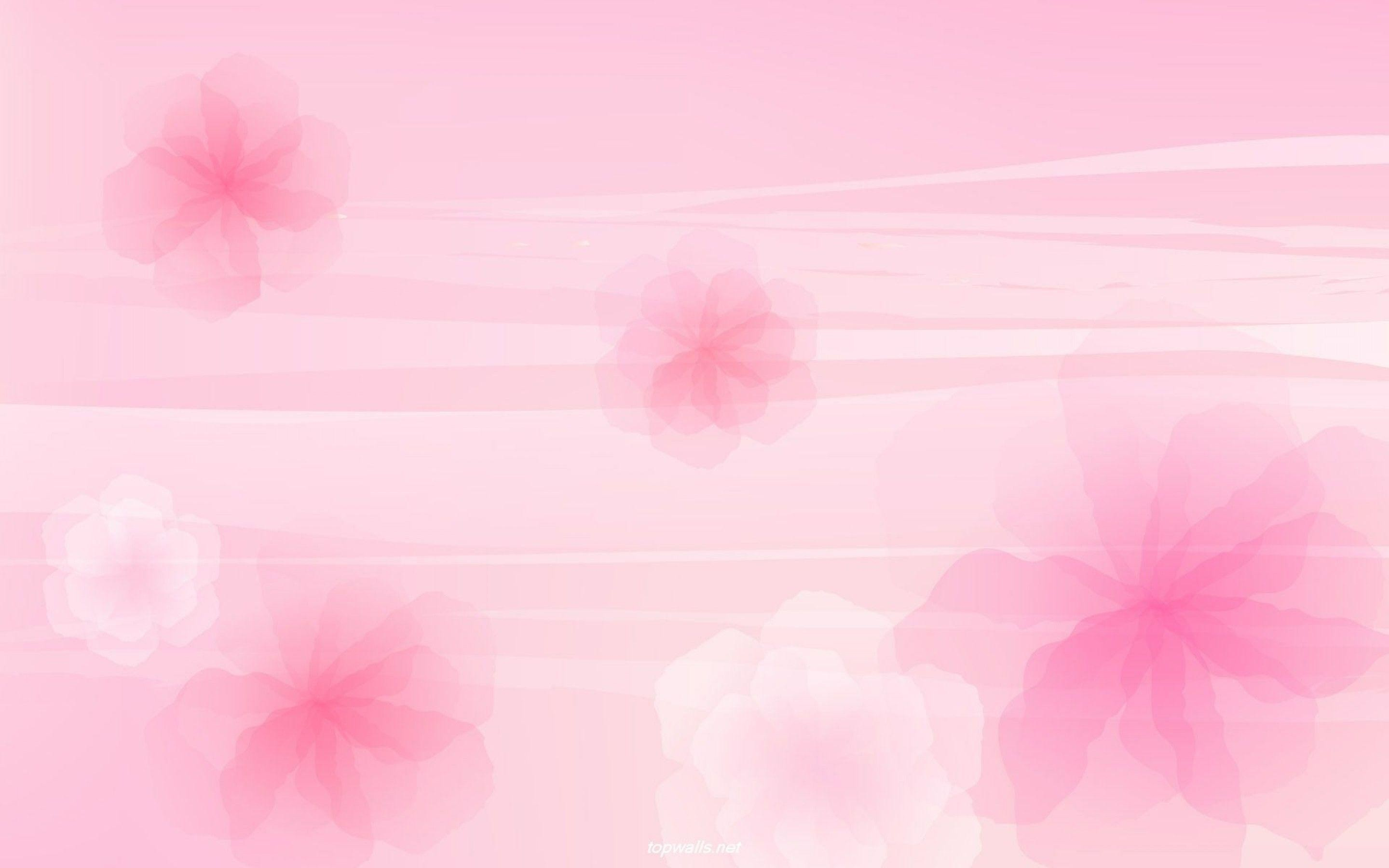 1920x1080 8 Iphone Wallpaper Flowers8 1 600x338 Light Pink Flower 58 Pictures