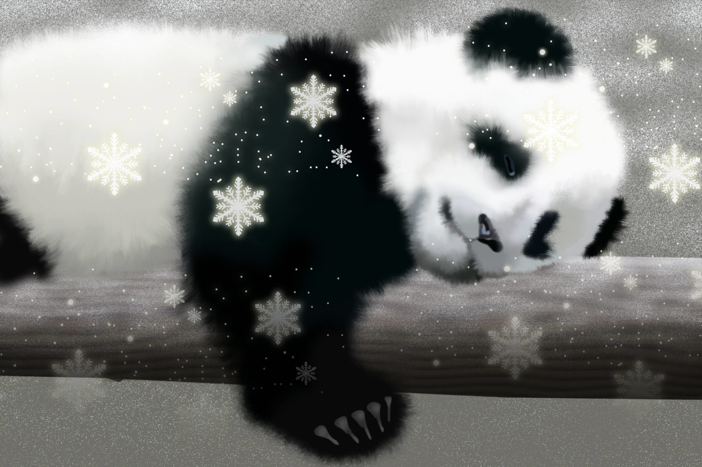 Cute Panda Wallpaper 62 Pictures