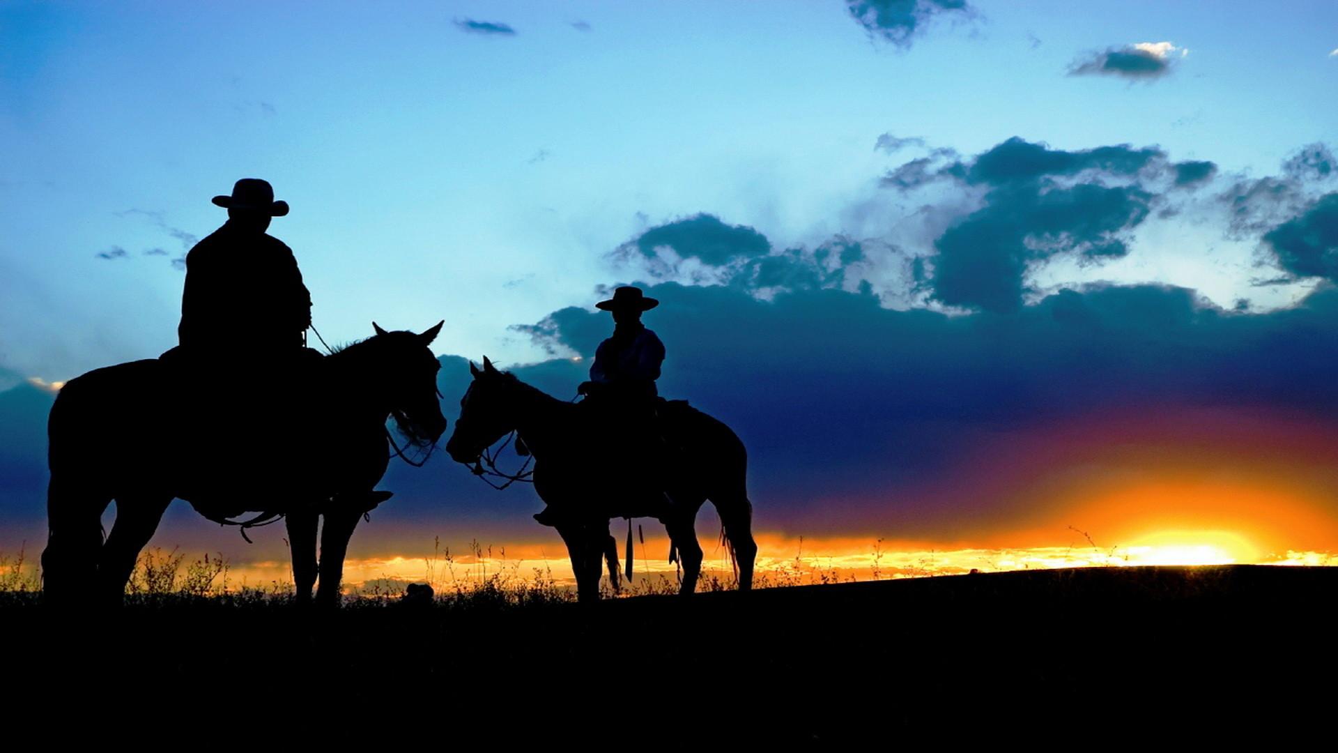Quarter Horse Wallpaper 50 Pictures