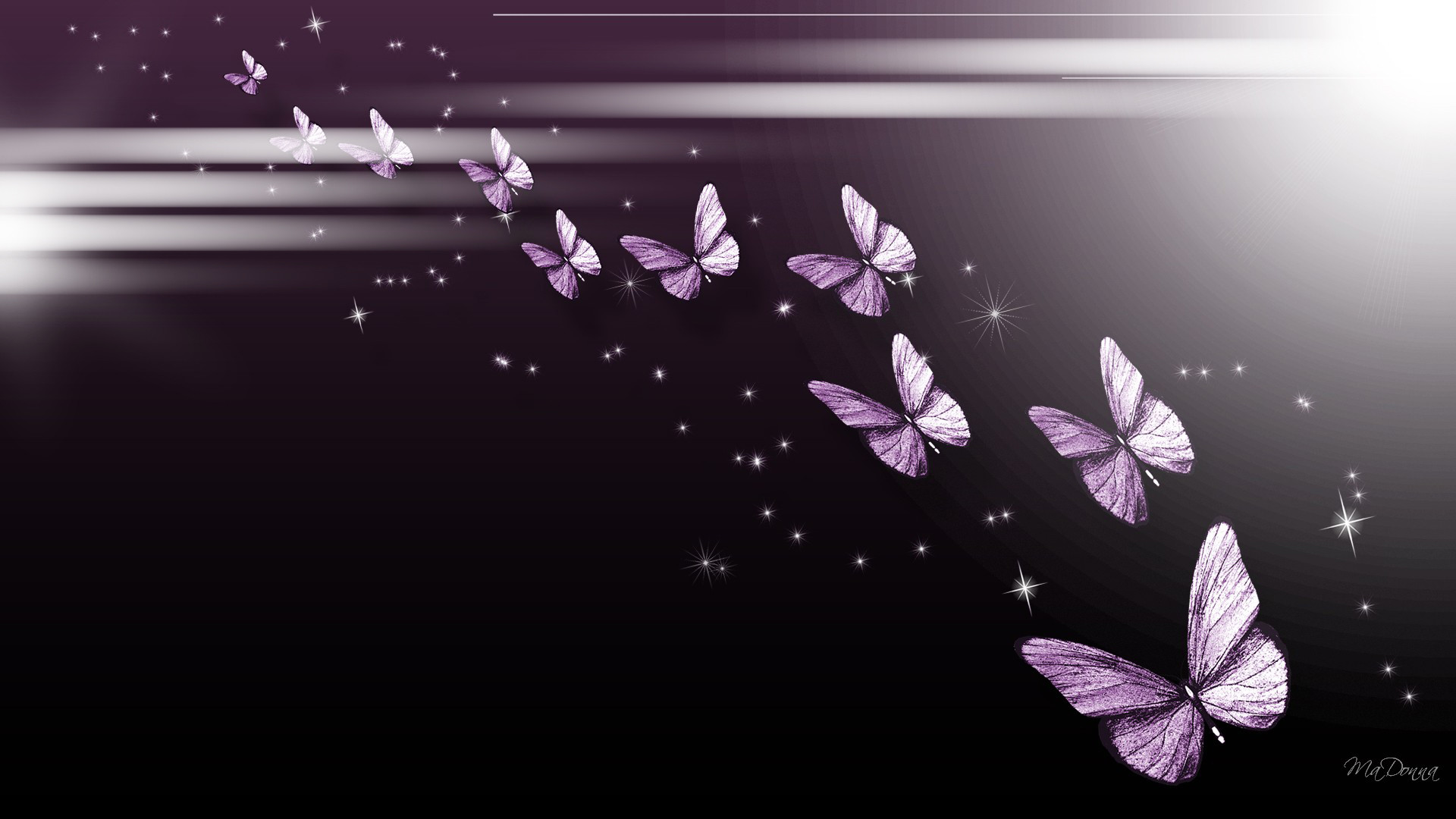 Abstract Butterfly Wallpaper 65 Pictures
