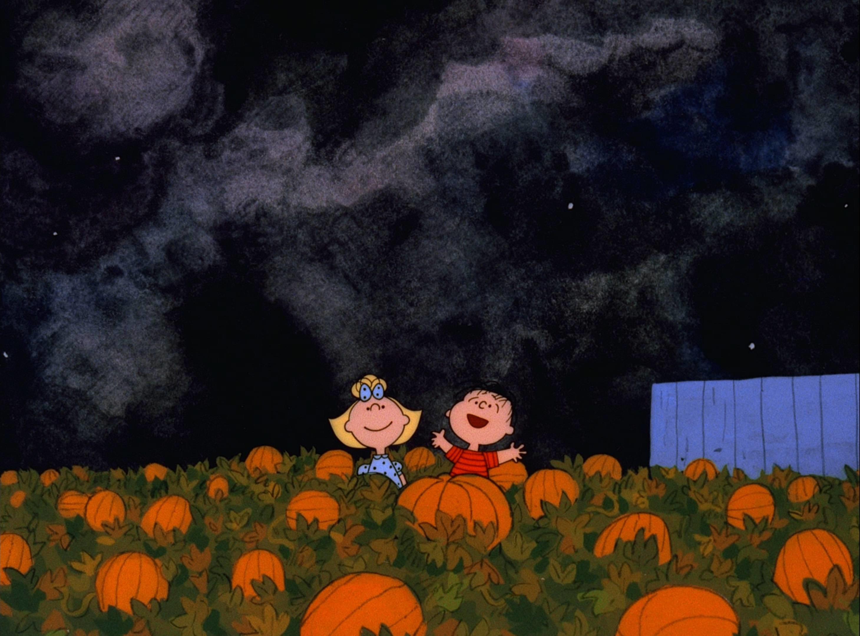 Halloween Pumpkin Wallpaper Iphone.Pumpkin Wallpaper Backgrounds 57 Pictures