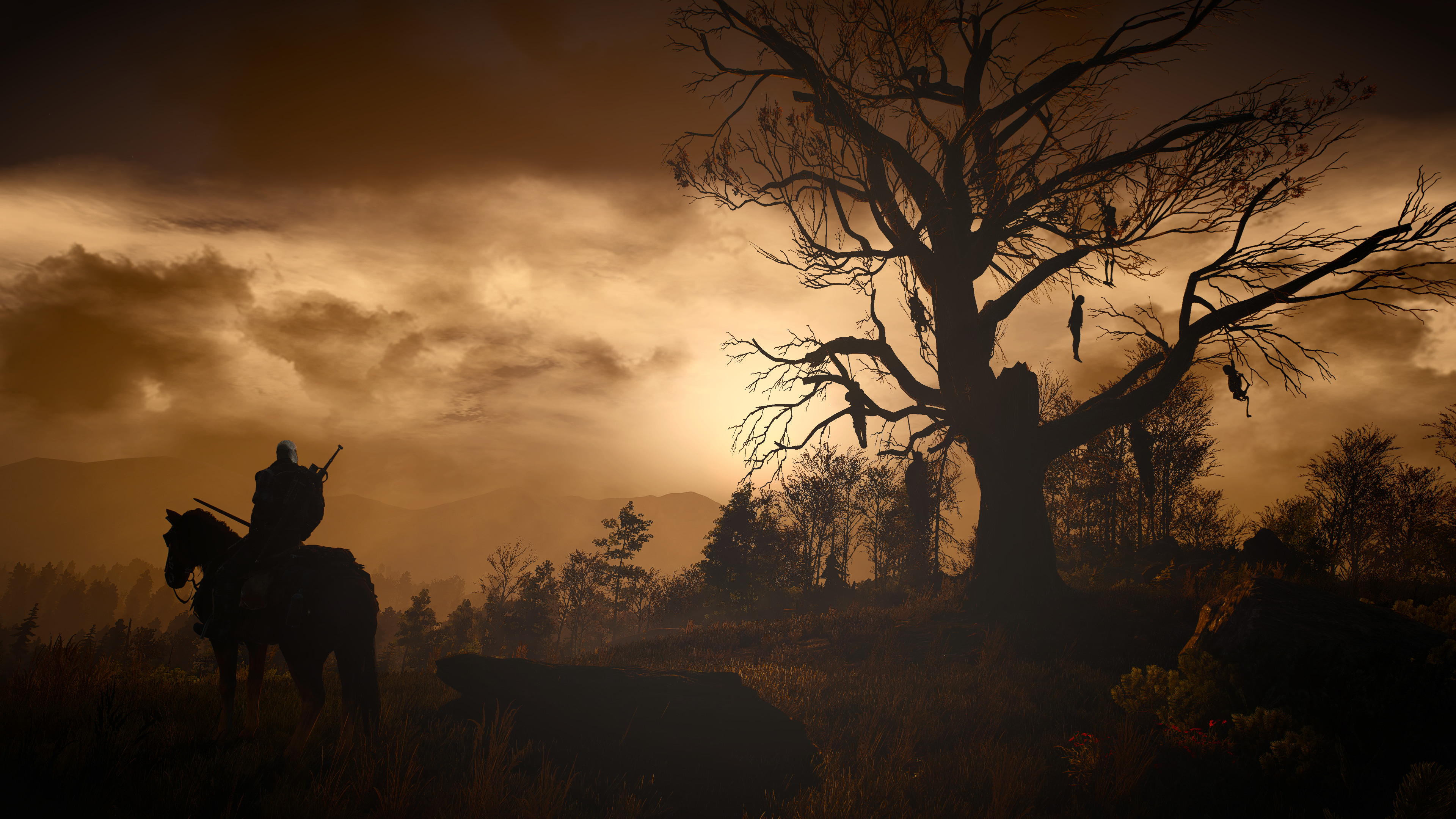 The Witcher Wallpaper 81 Pictures