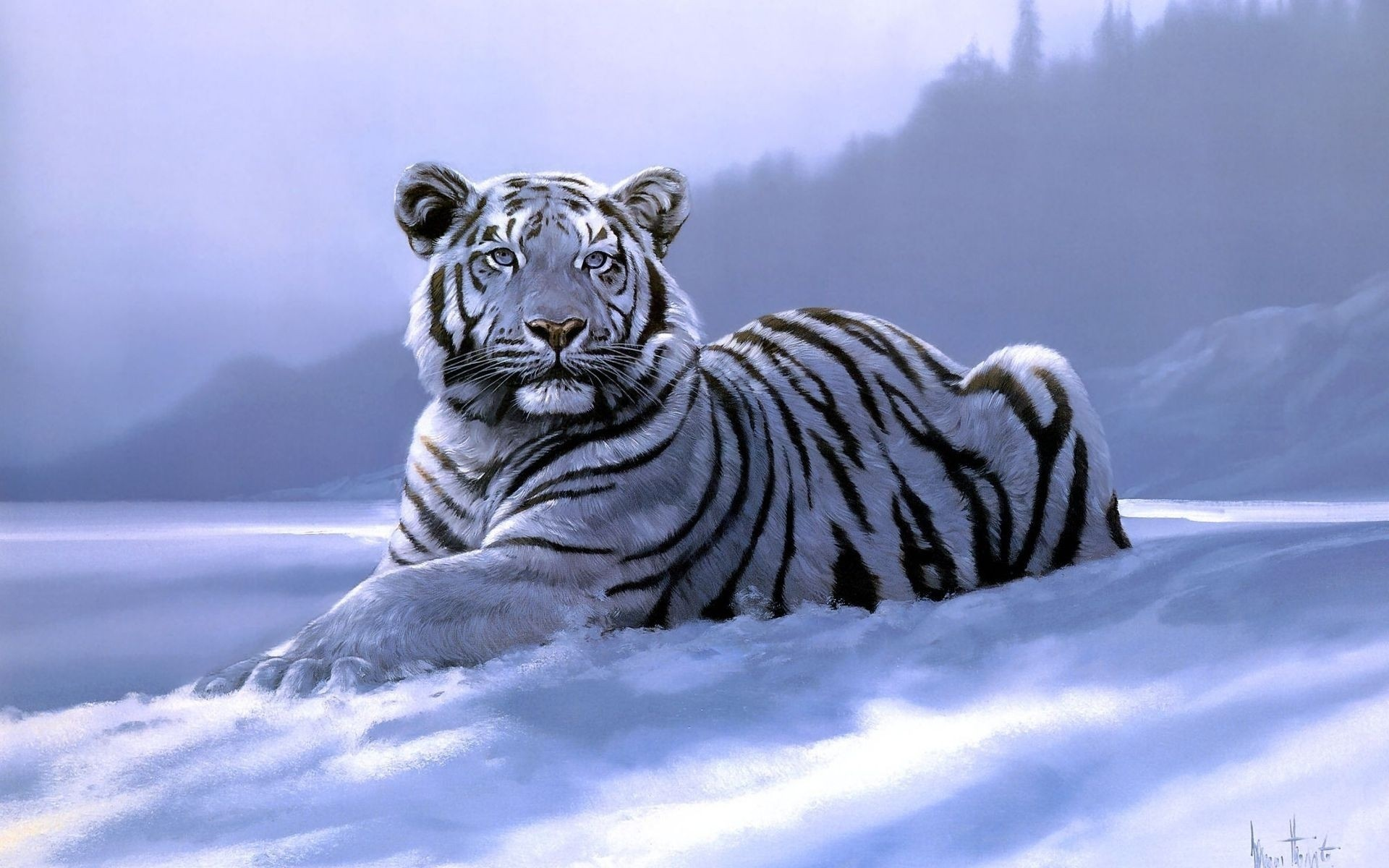 Tigers Backgrounds (64+ pictures)