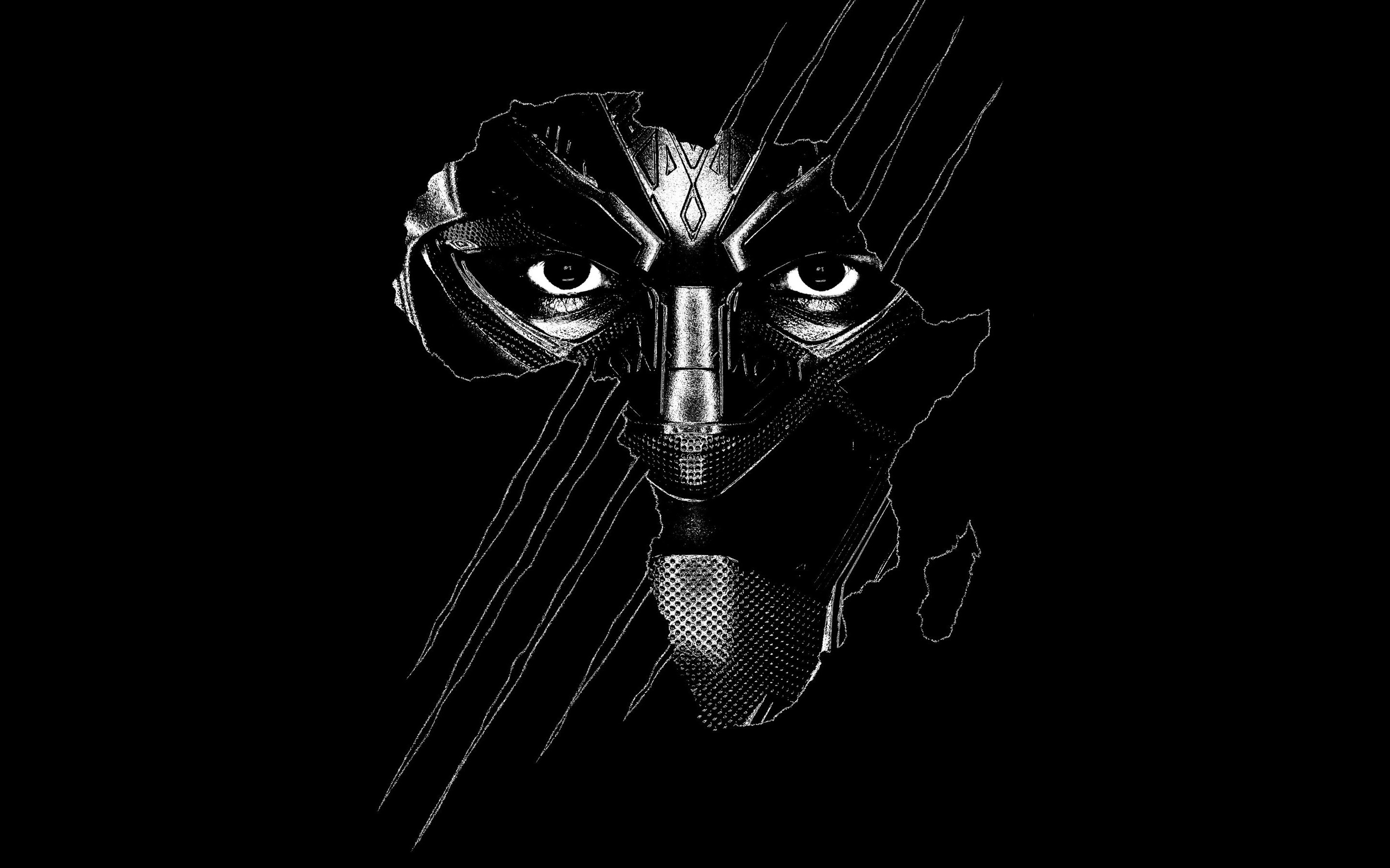 black panther wallpapers 67 pictures