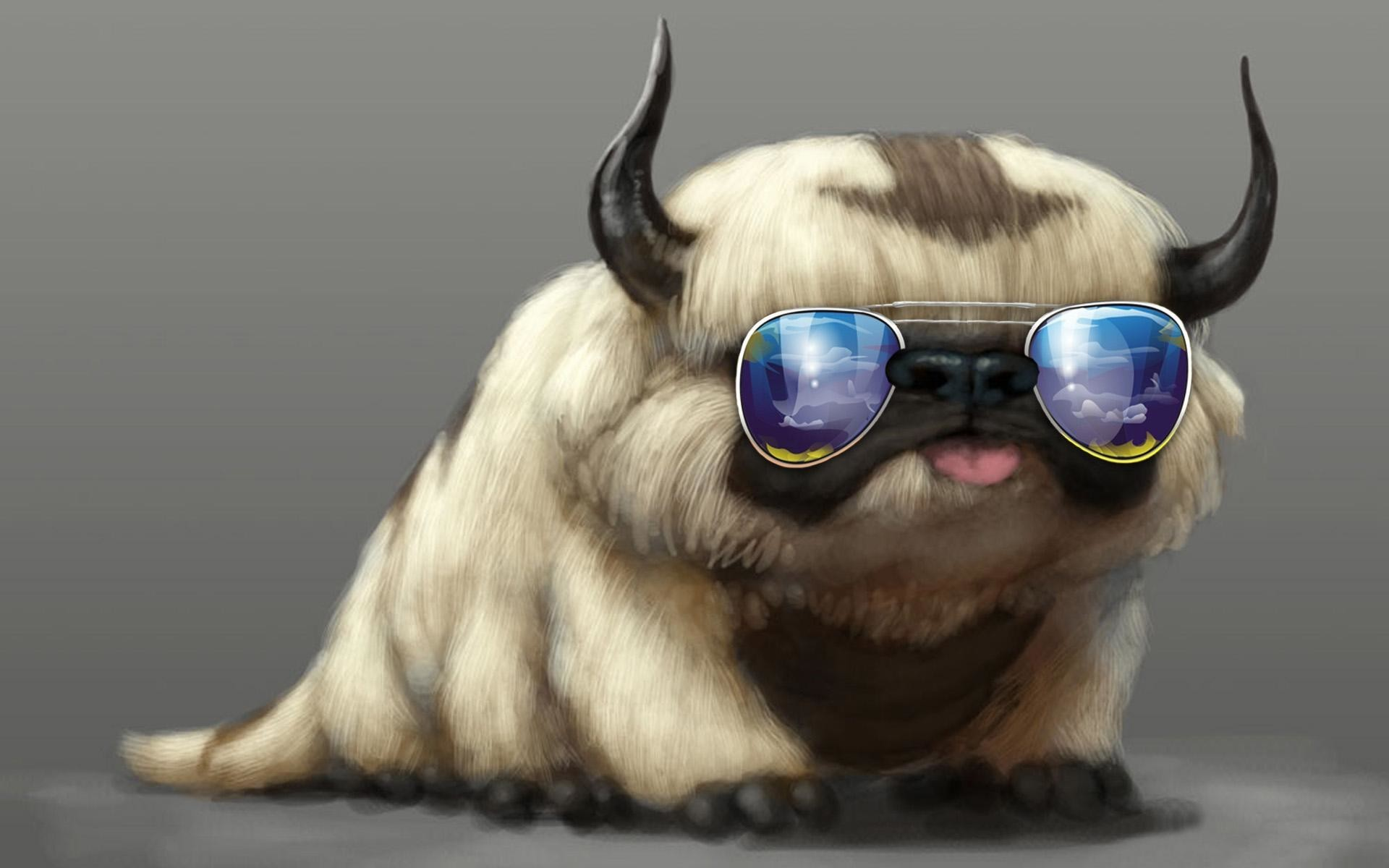 Cool Cats Wallpapers 71 Pictures