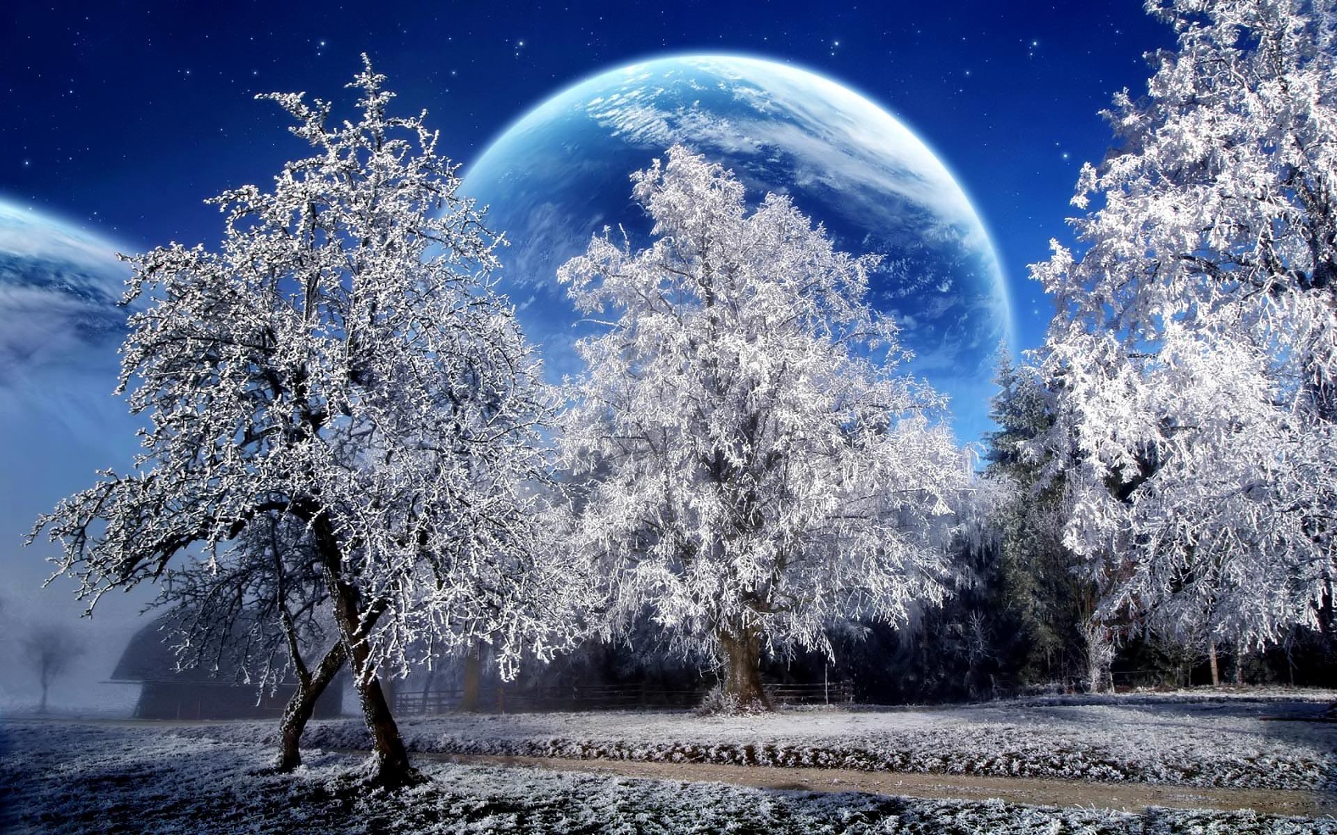 Winter Wallpaper For Desktop 69 Pictures