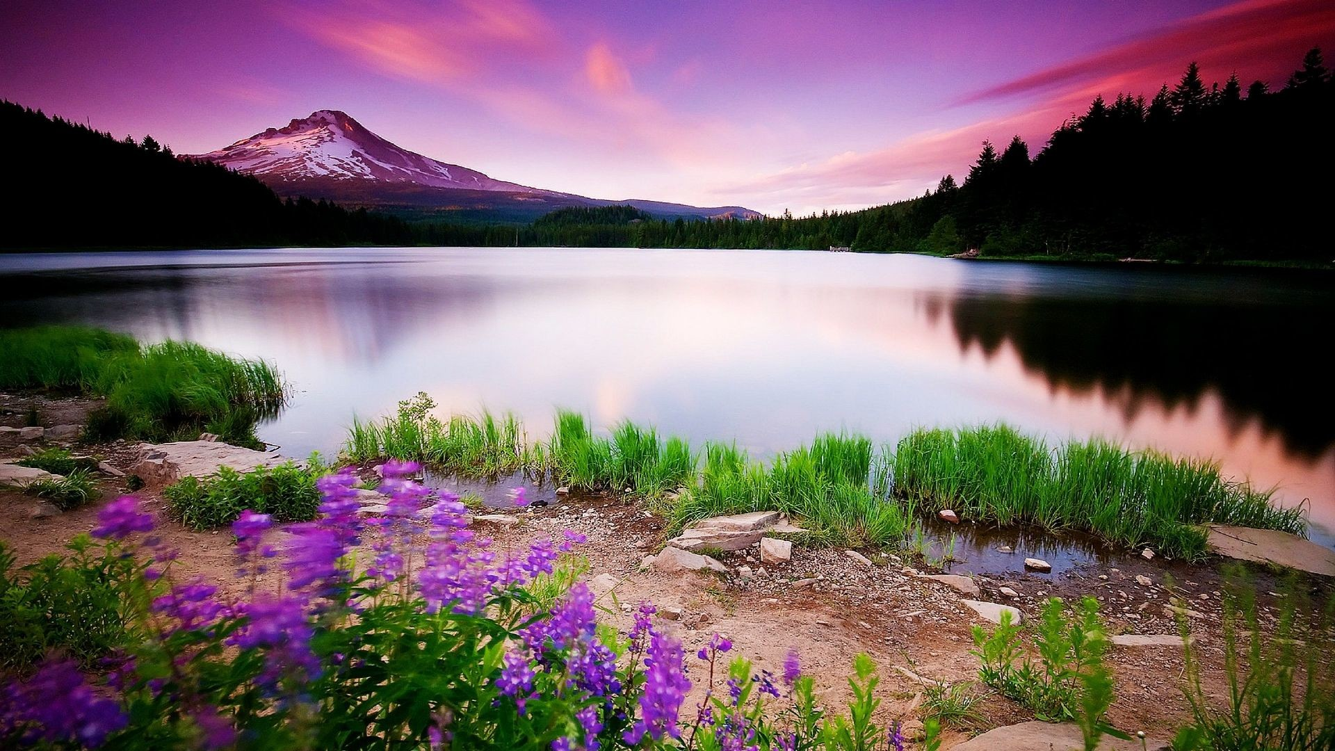 Most Beautiful Backgrounds (65+ pictures)