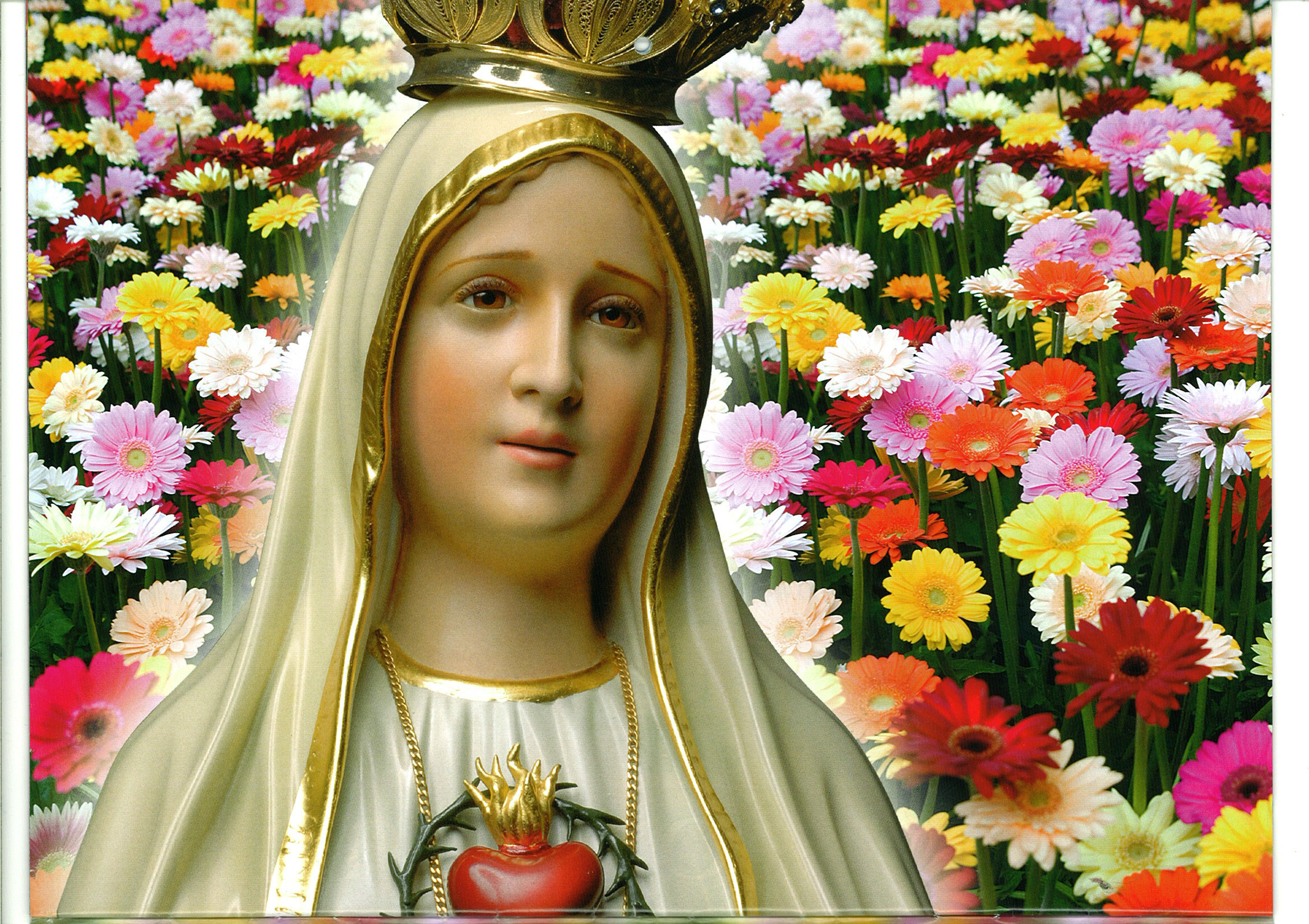 Our Lady Of Fatima Wallpapers 53 Pictures