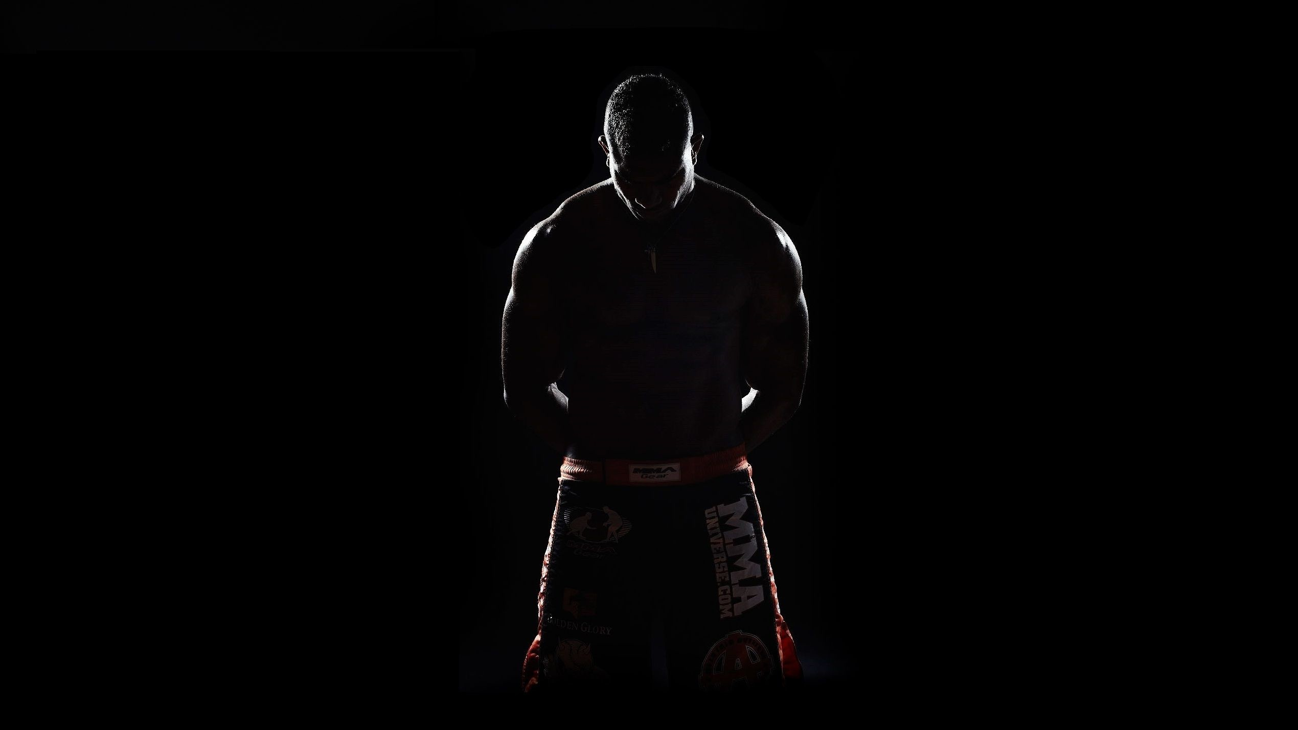 Mixed Martial Arts Wallpaper 66 Pictures