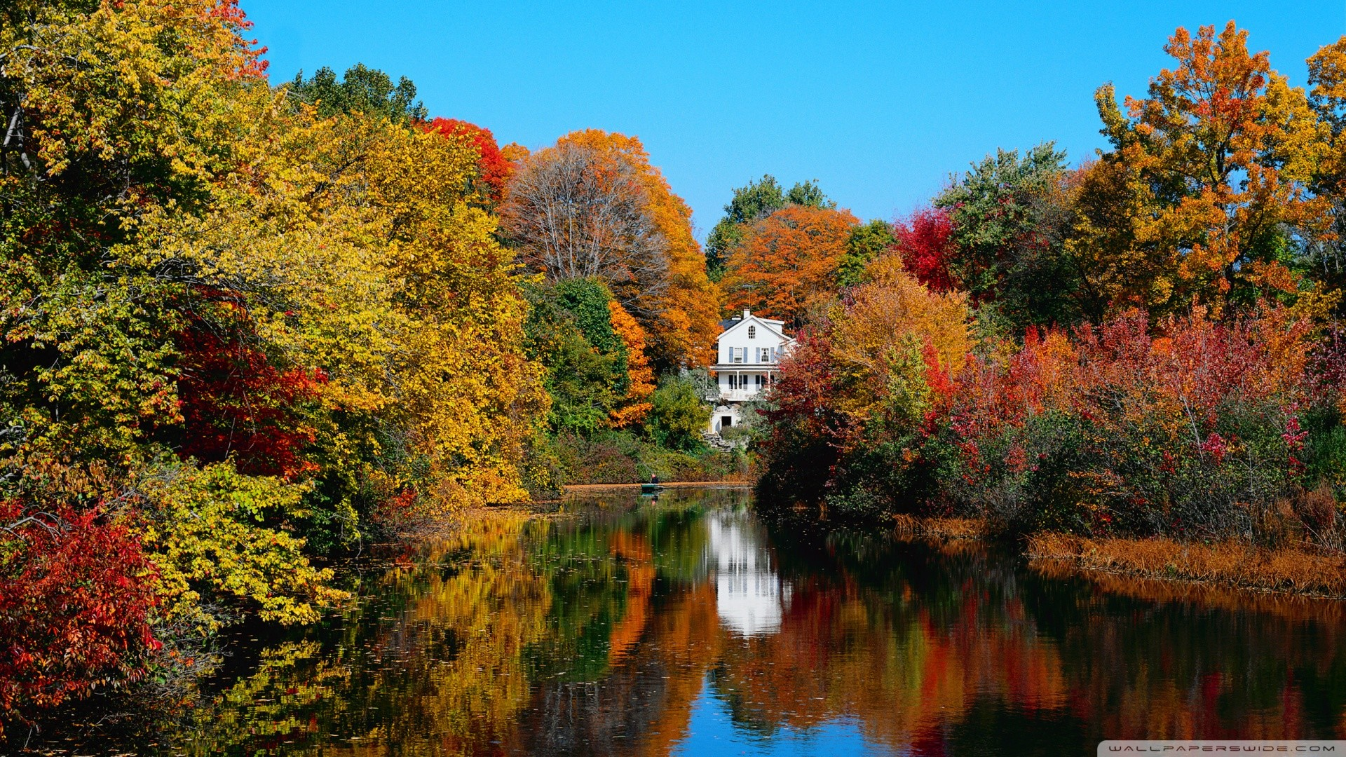 Download Fall Color Wallpaper on