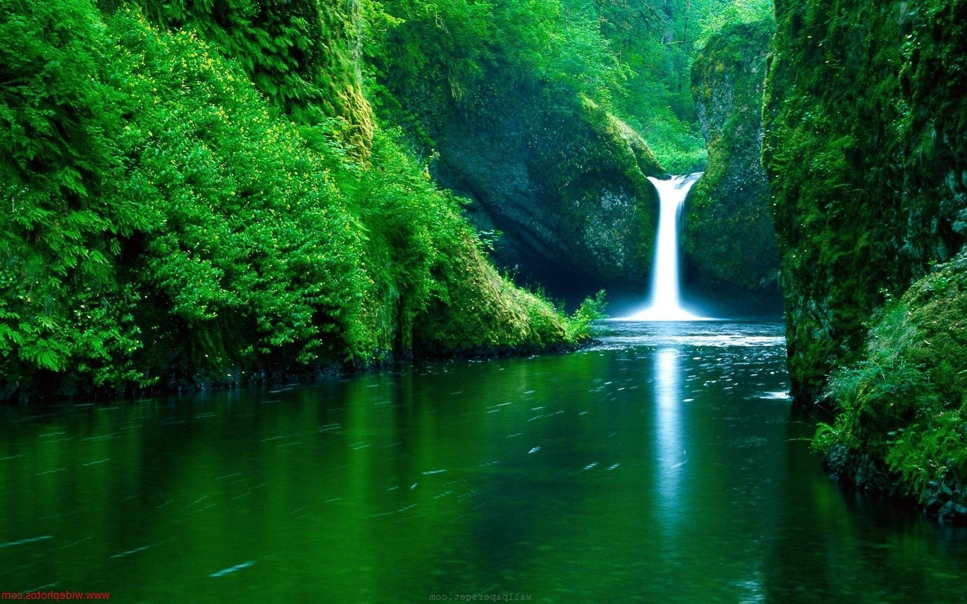 Nature Wallpaper 1600x900 72 Pictures