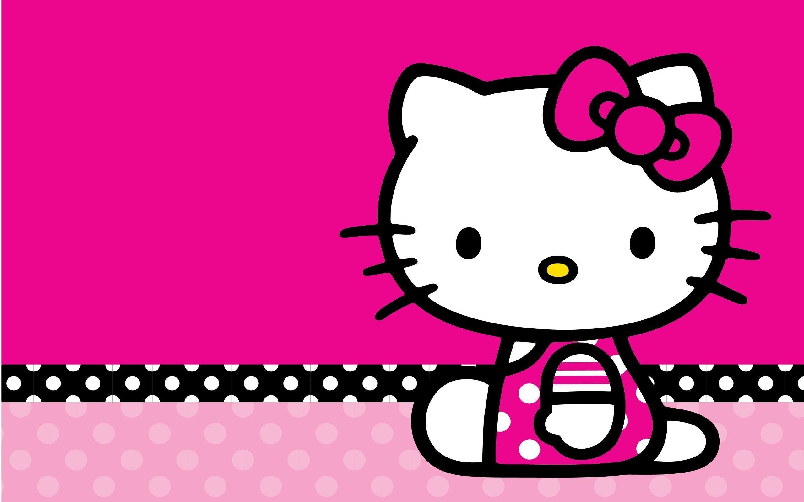 Get Kittie Backgrounds  Wallpapers