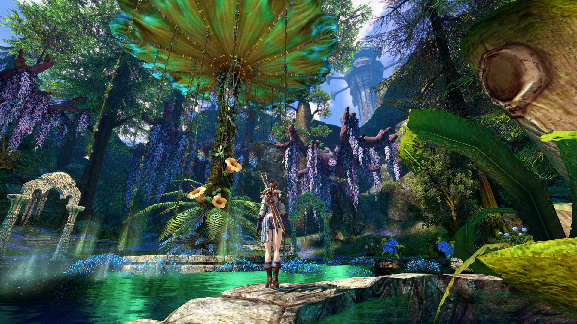 Tera Wallpapers 76 Pictures