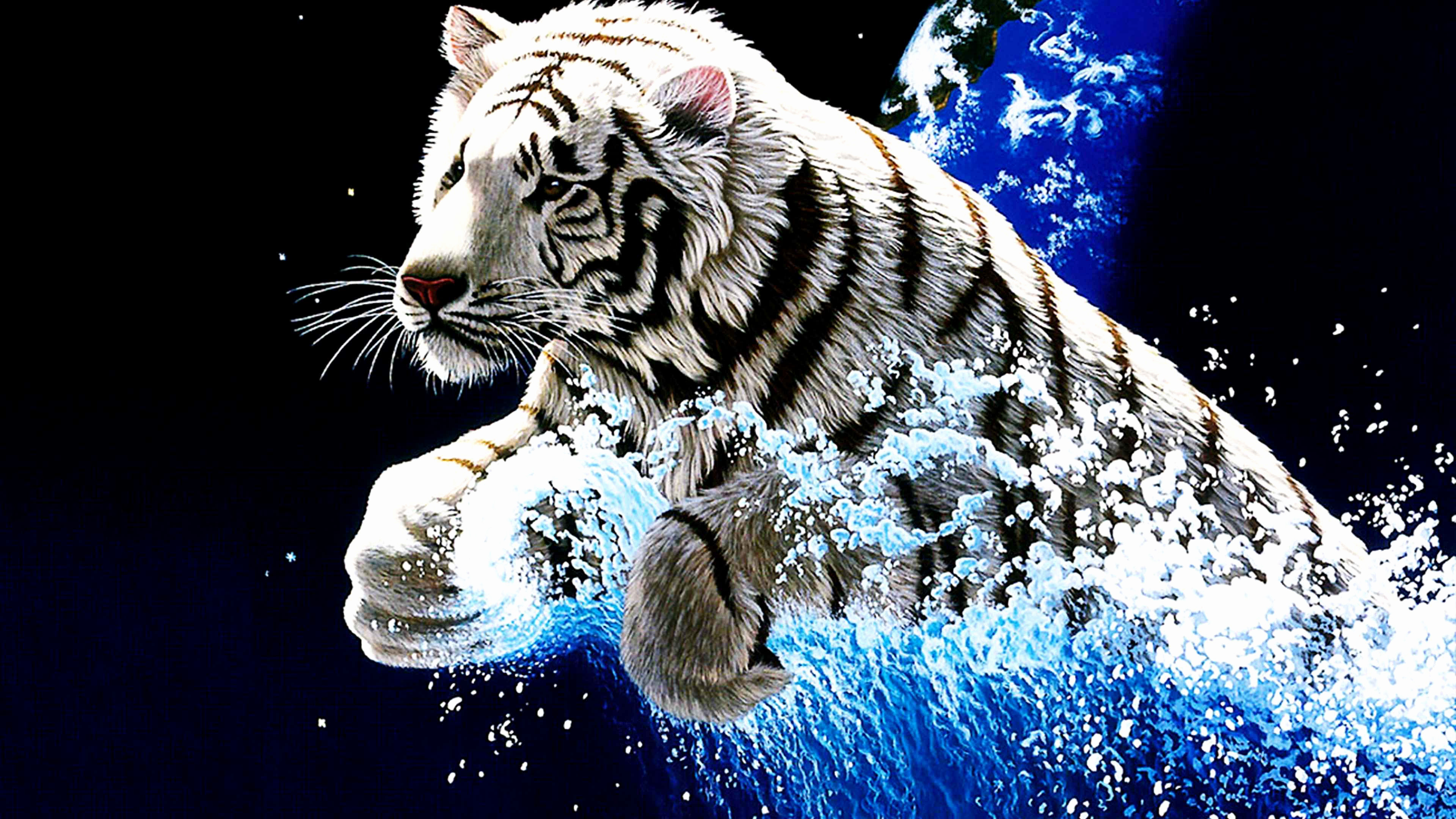 Tiger Wallpapers 65 Pictures