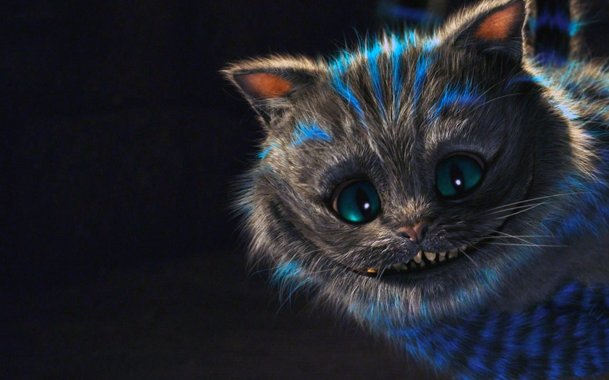 wallpaper.wiki-HD-cheshire-cat-pictures-tumblr-PIC- 2560x1600