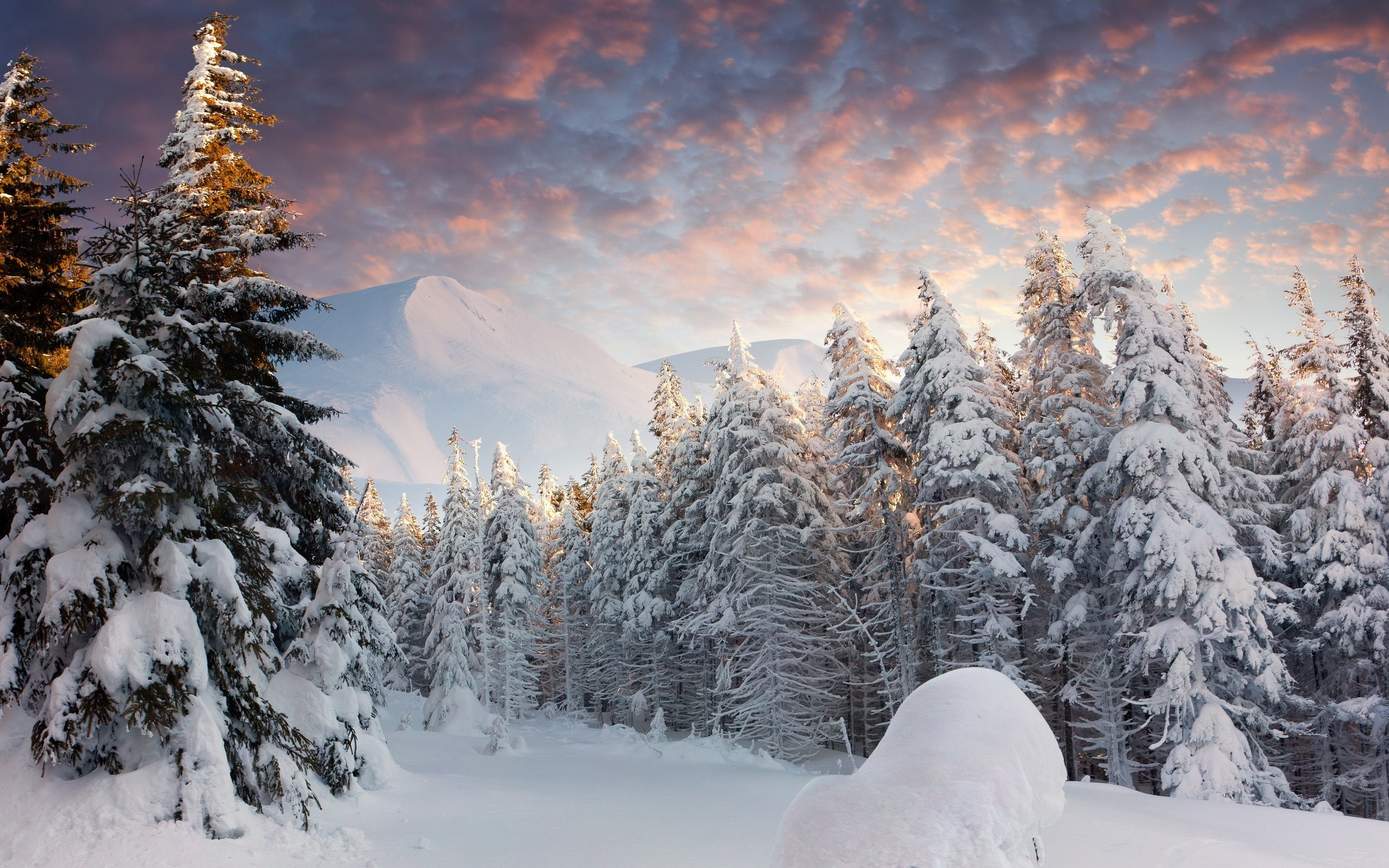 Snow Wallpapers for Desktop (57+ pictures)