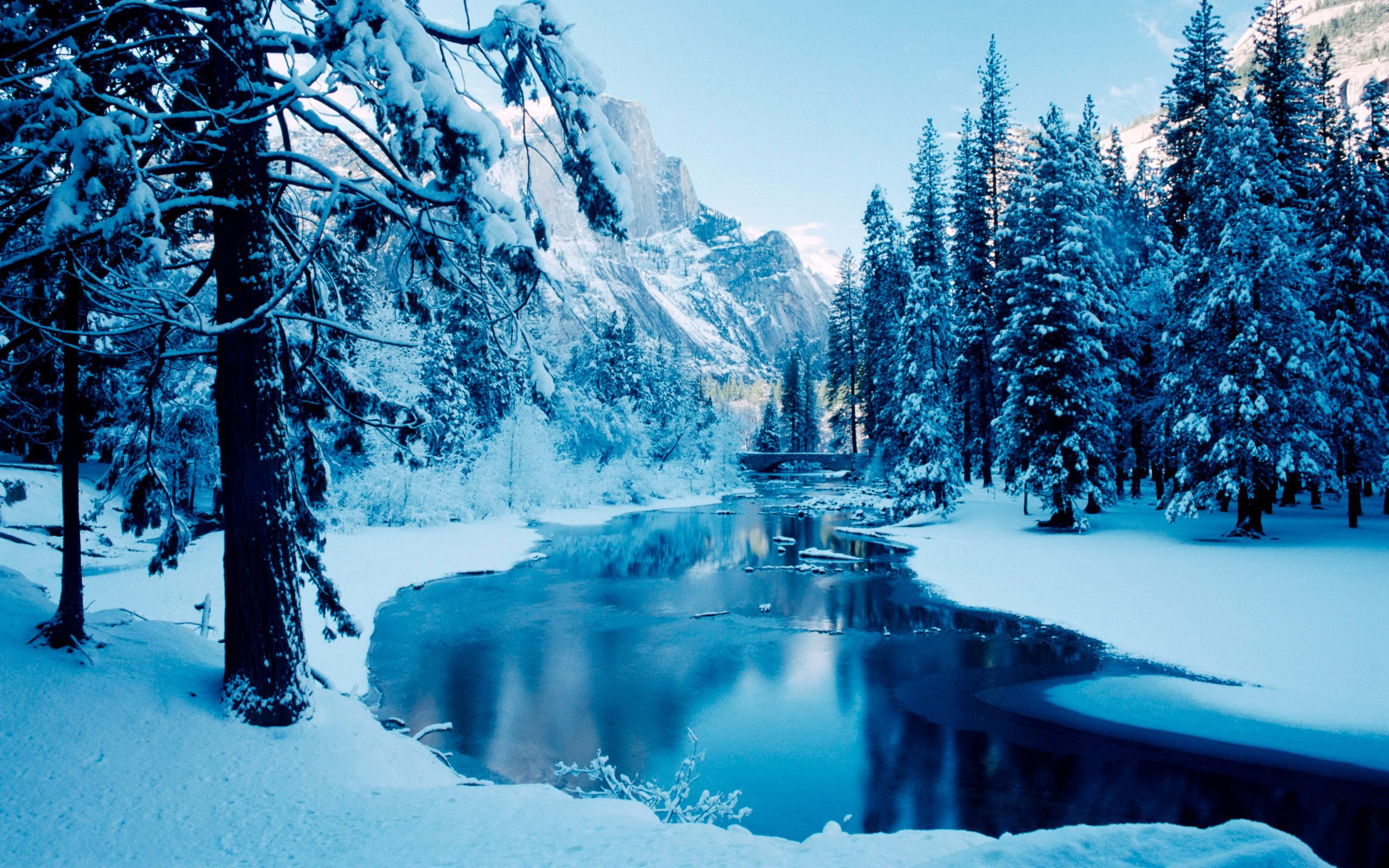 Christmas Winter Scenes Free Desktop Wallpaper 1920x1200