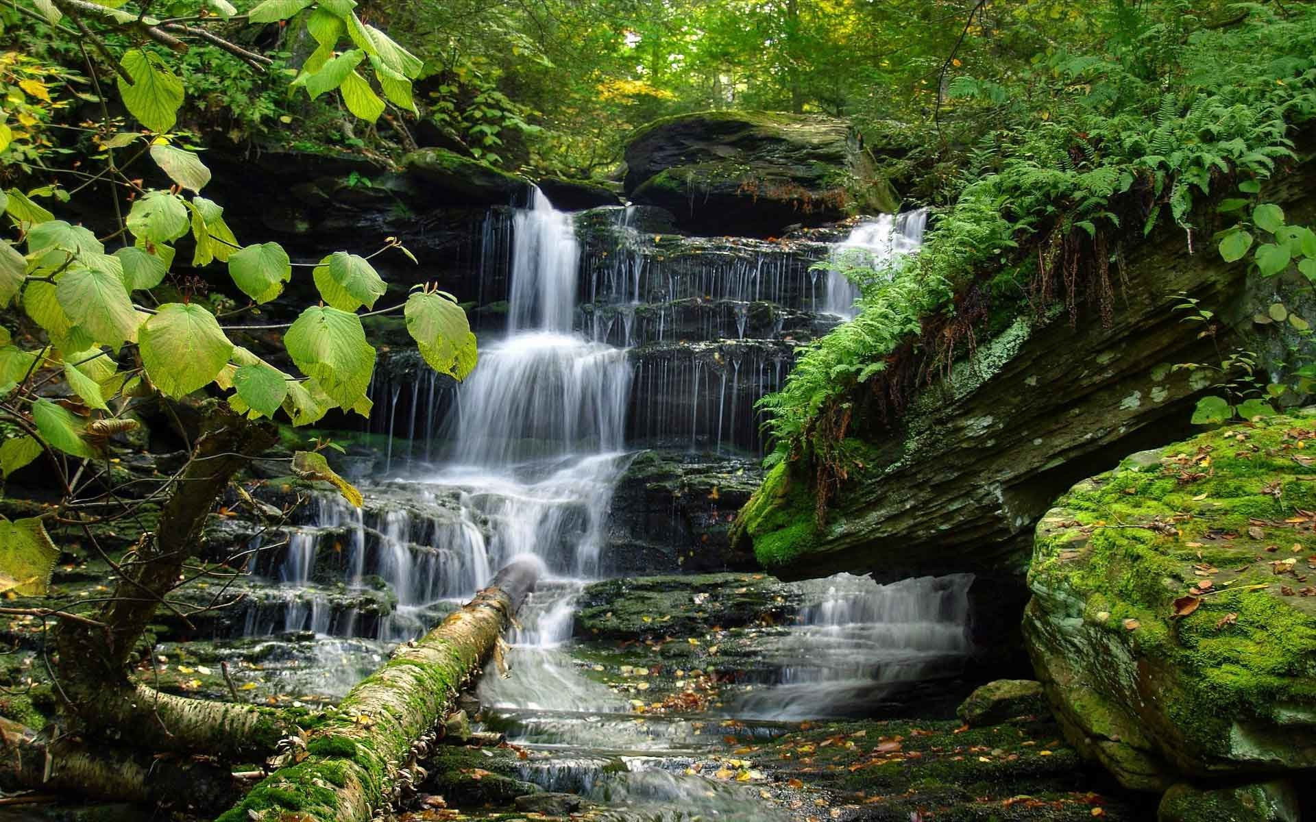 20 Gorgeous Hd Waterfall Wallpapers: Beautiful Waterfall Wallpaper (47+ Pictures