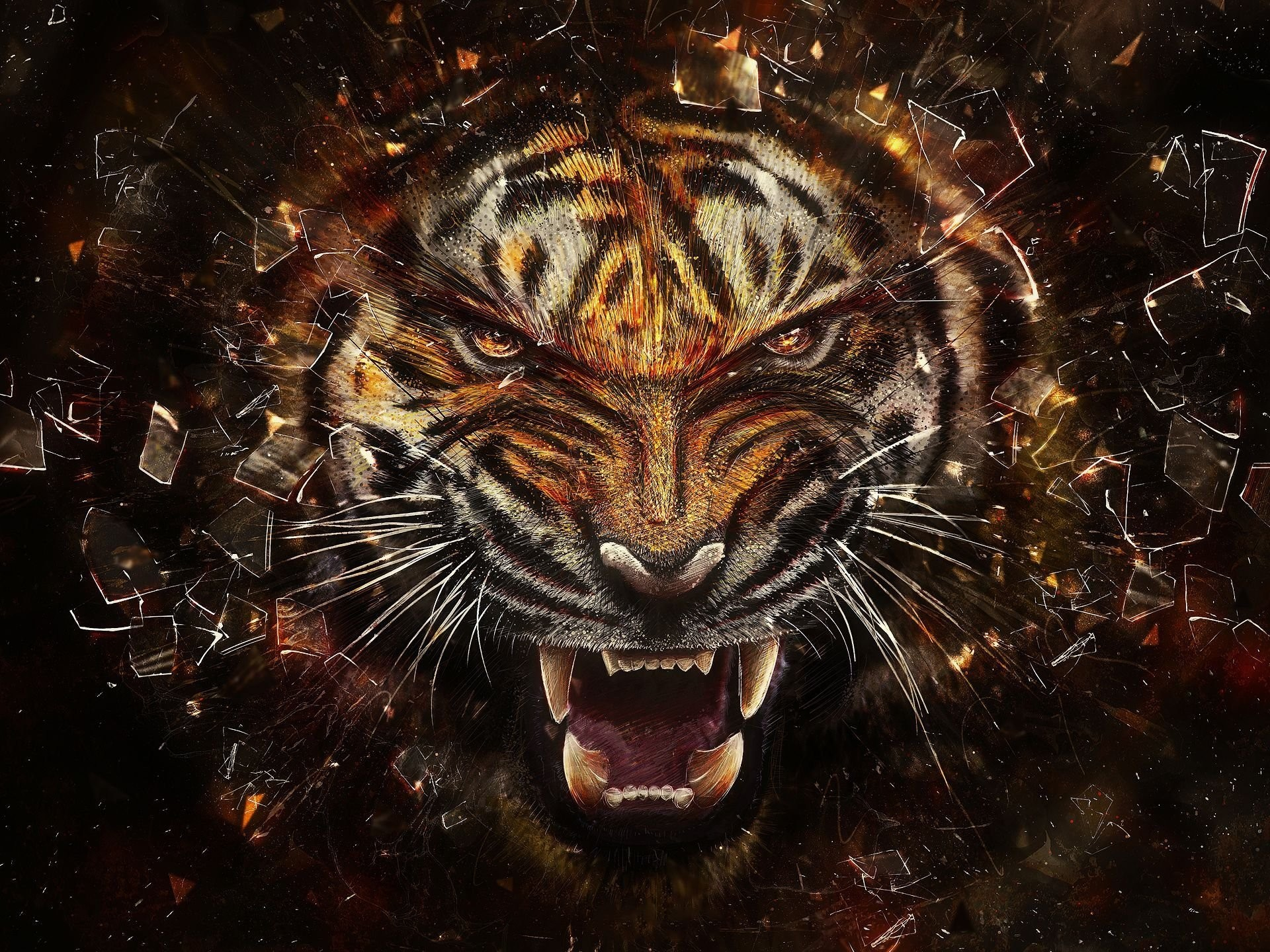 Cool Tiger Backgrounds 63 Pictures