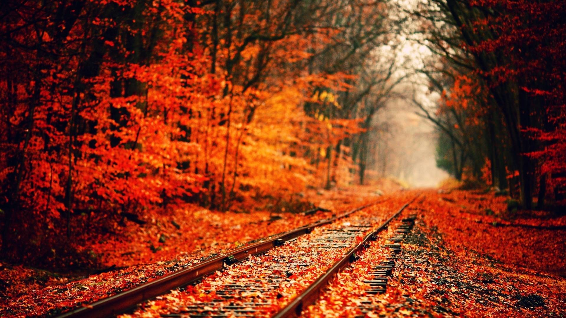 Fall Wallpapers For Desktop 67 Pictures