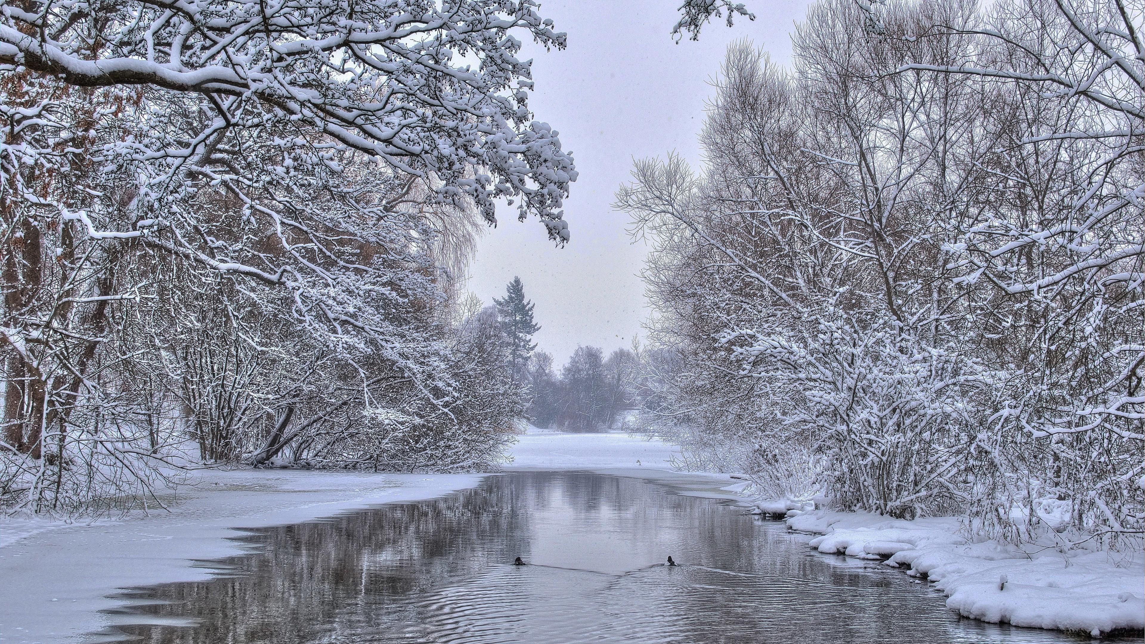 Winter Scene Desktop Background (51+ pictures)