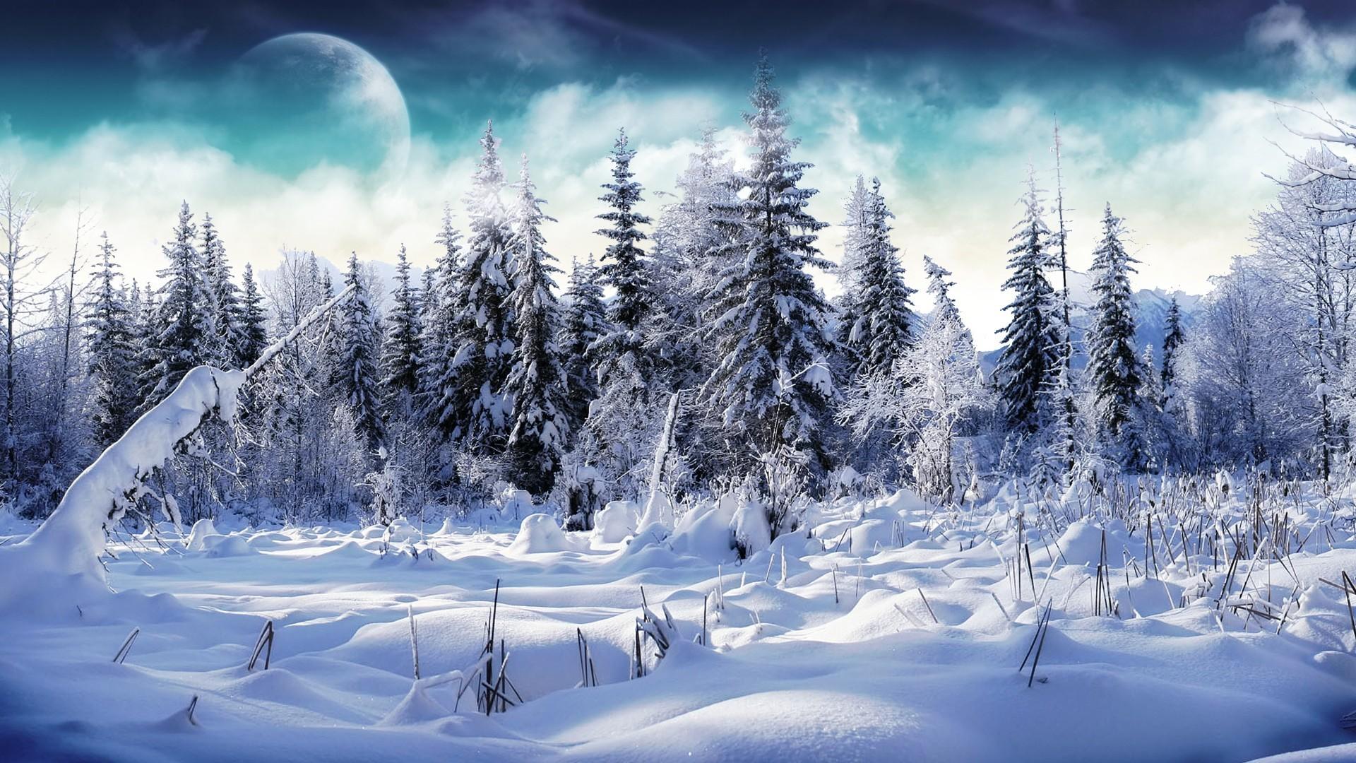 Winter Wallpapers For Desktop 57 Pictures