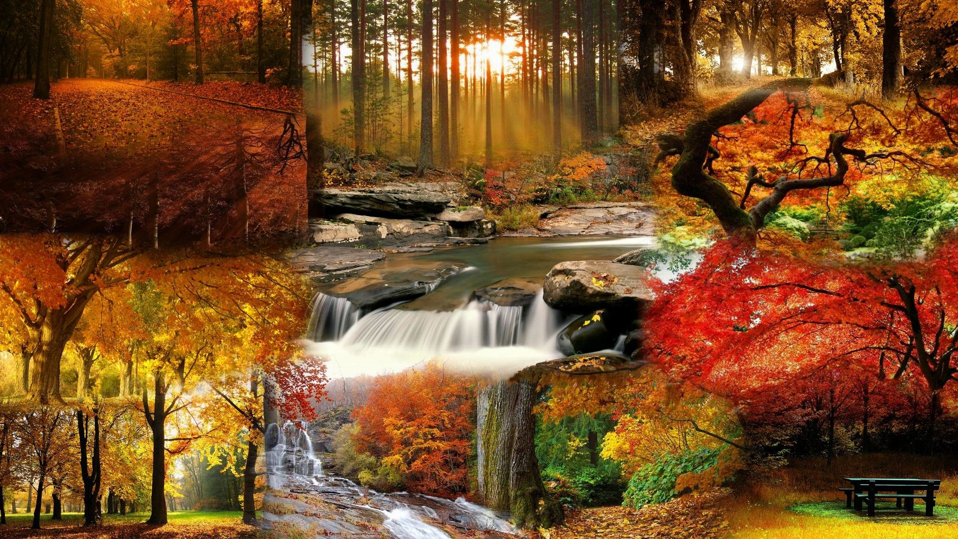 Fall Wallpapers 70 Pictures