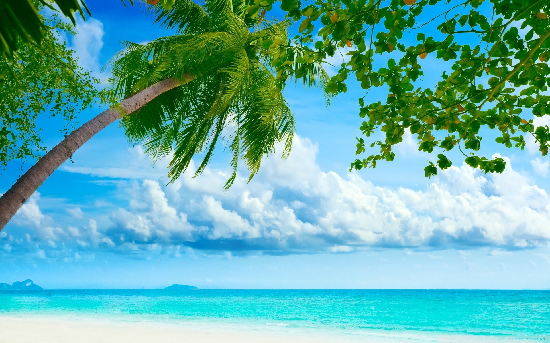 Hd Wallpaper Beach 65 Pictures