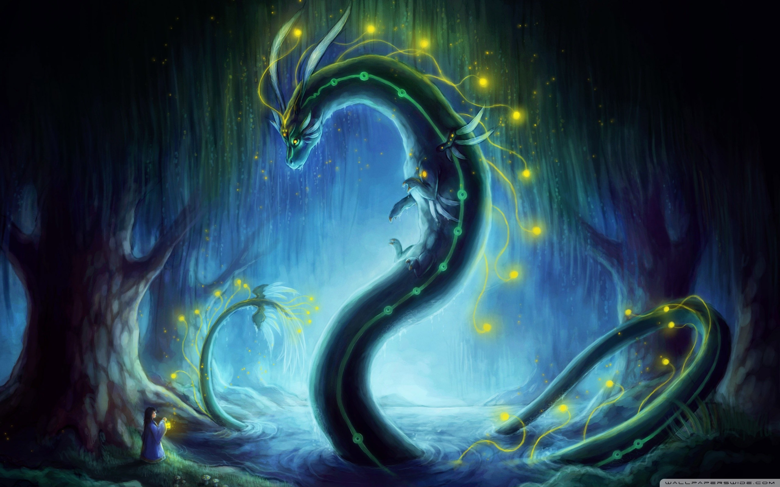 Dragon Wallpapers And Backgrounds 63 Pictures