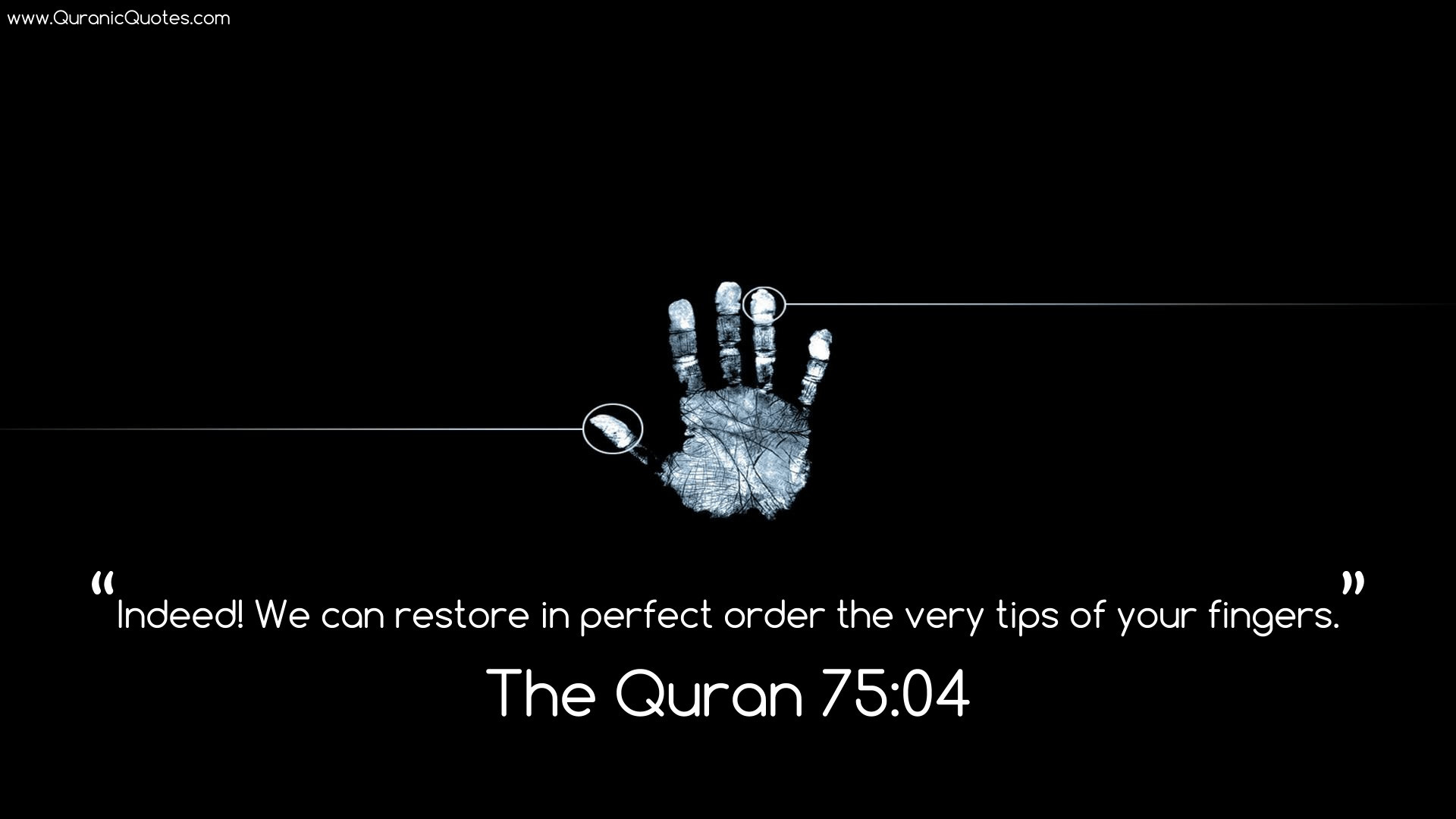 The Quran Wallpapers 61 Pictures