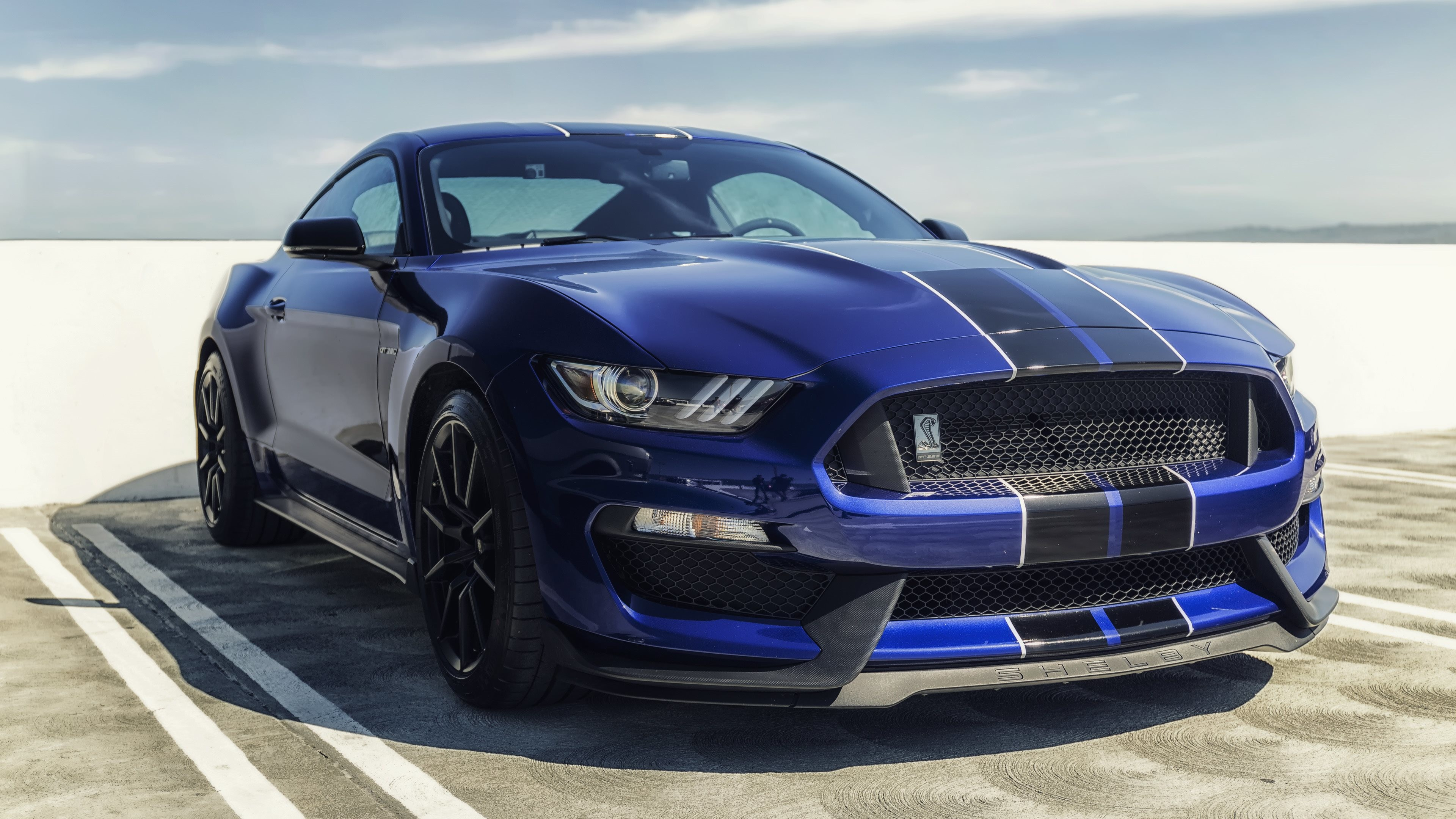 Wallpaper Mobil Sport Mustang: 2018 Ford Mustang Shelby Wallpaper (62+ Pictures