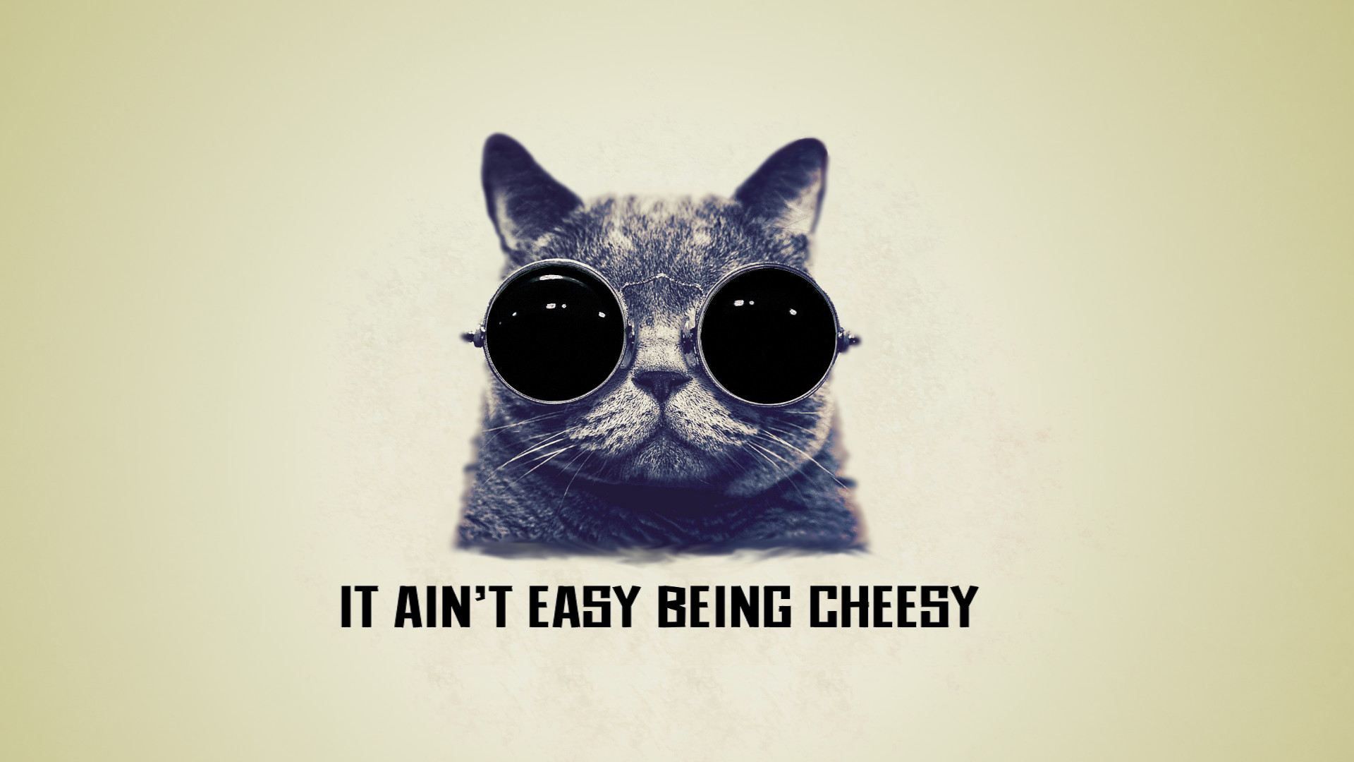 ... It ain't easy being cheesy cool cat wallpaper by saitoukazuma 1920x1080