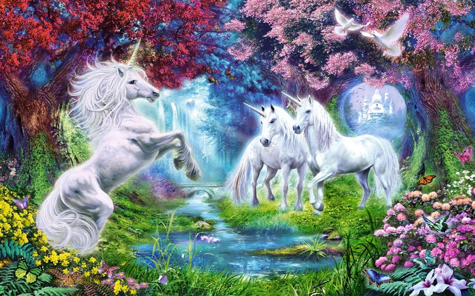 ausmalbilder pferde schimmel  kostenlose malvorlagen ideen
