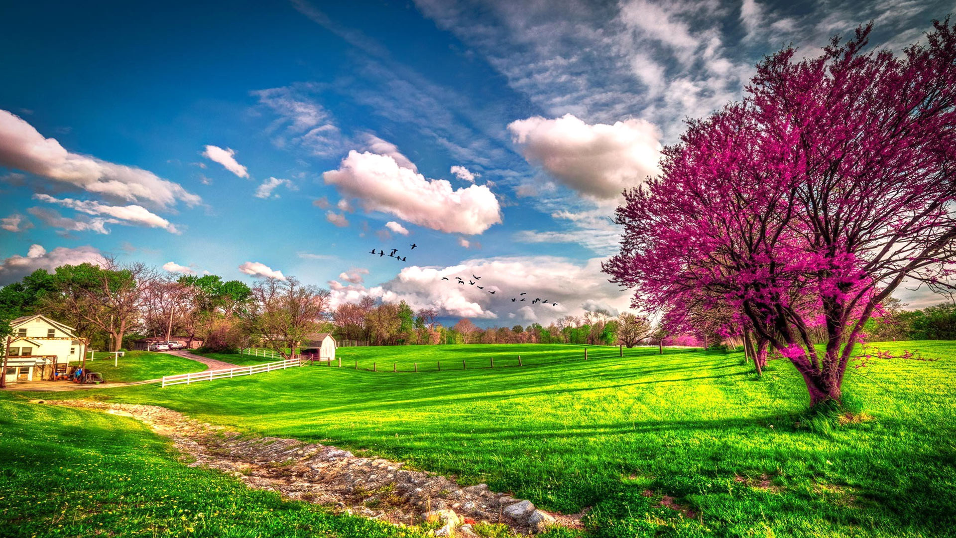 Scenic Wallpapers For Desktop 51 Pictures
