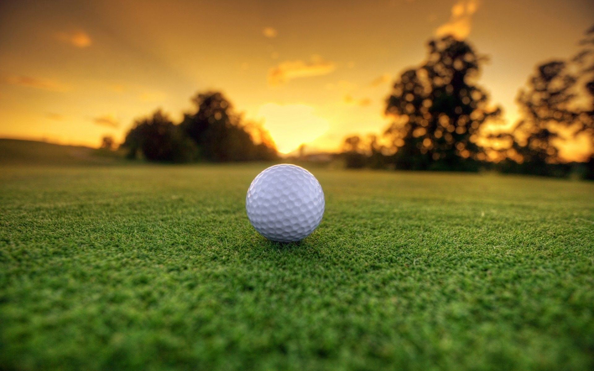 Golf Background 56 Pictures