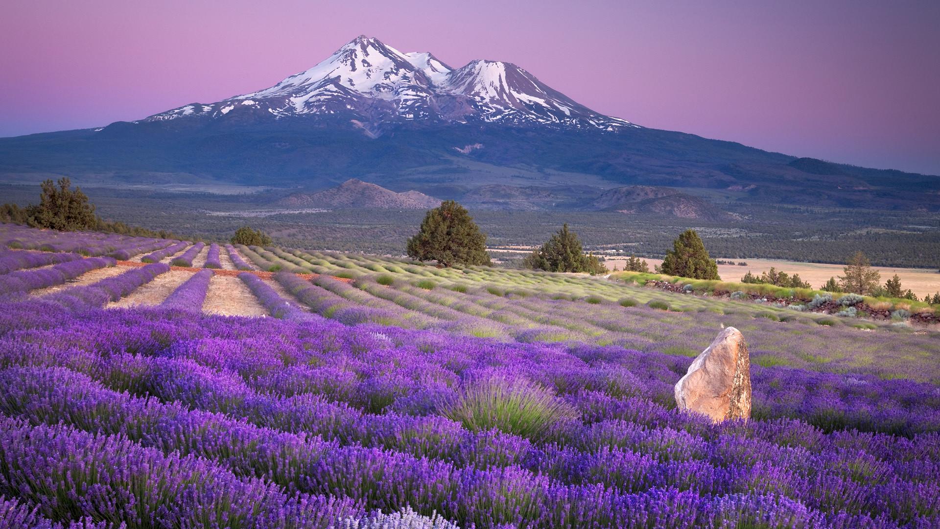 1920x1080 Mt Fuji Wallpaper 34456